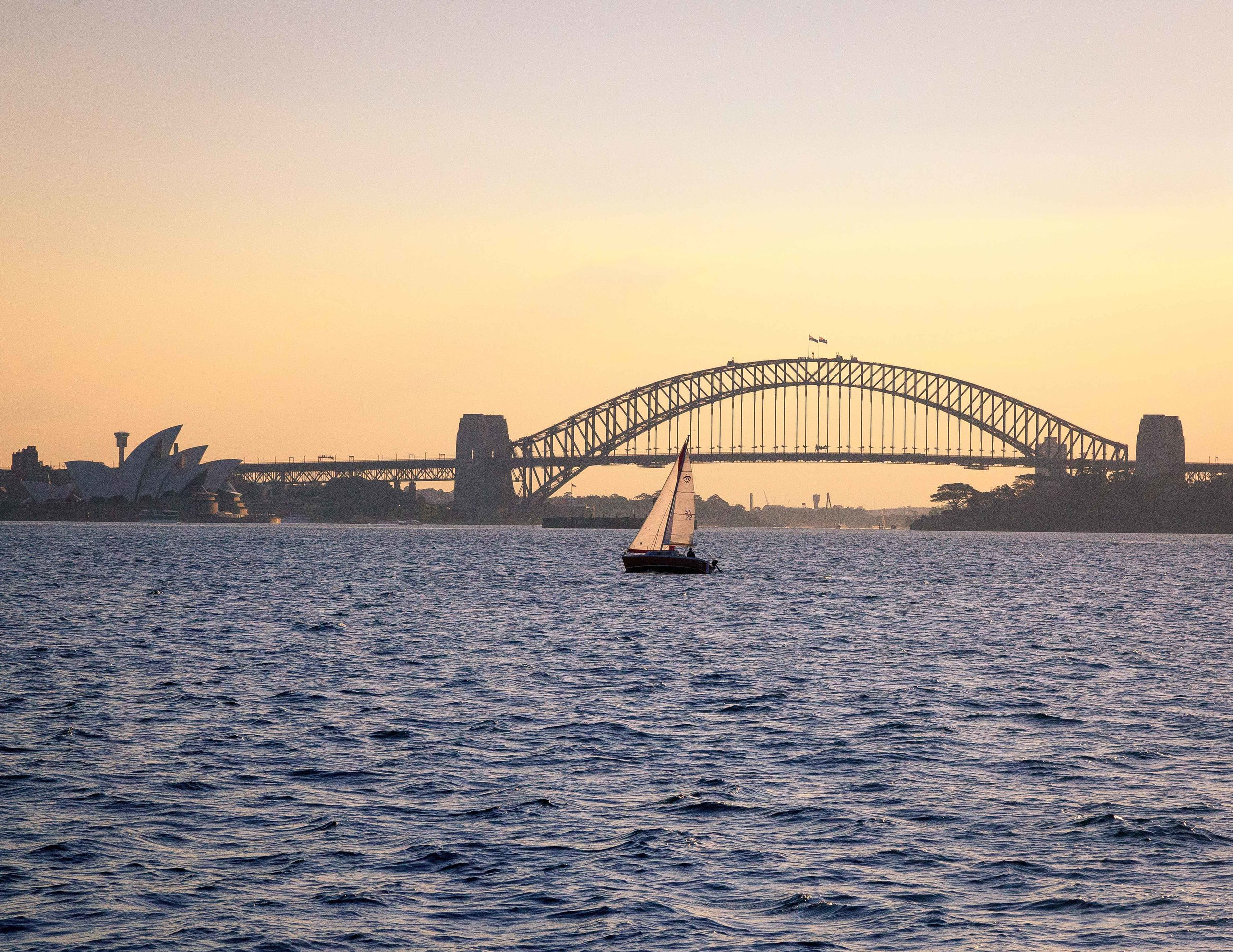 The view of Sydney Harbour from Watson's Bay