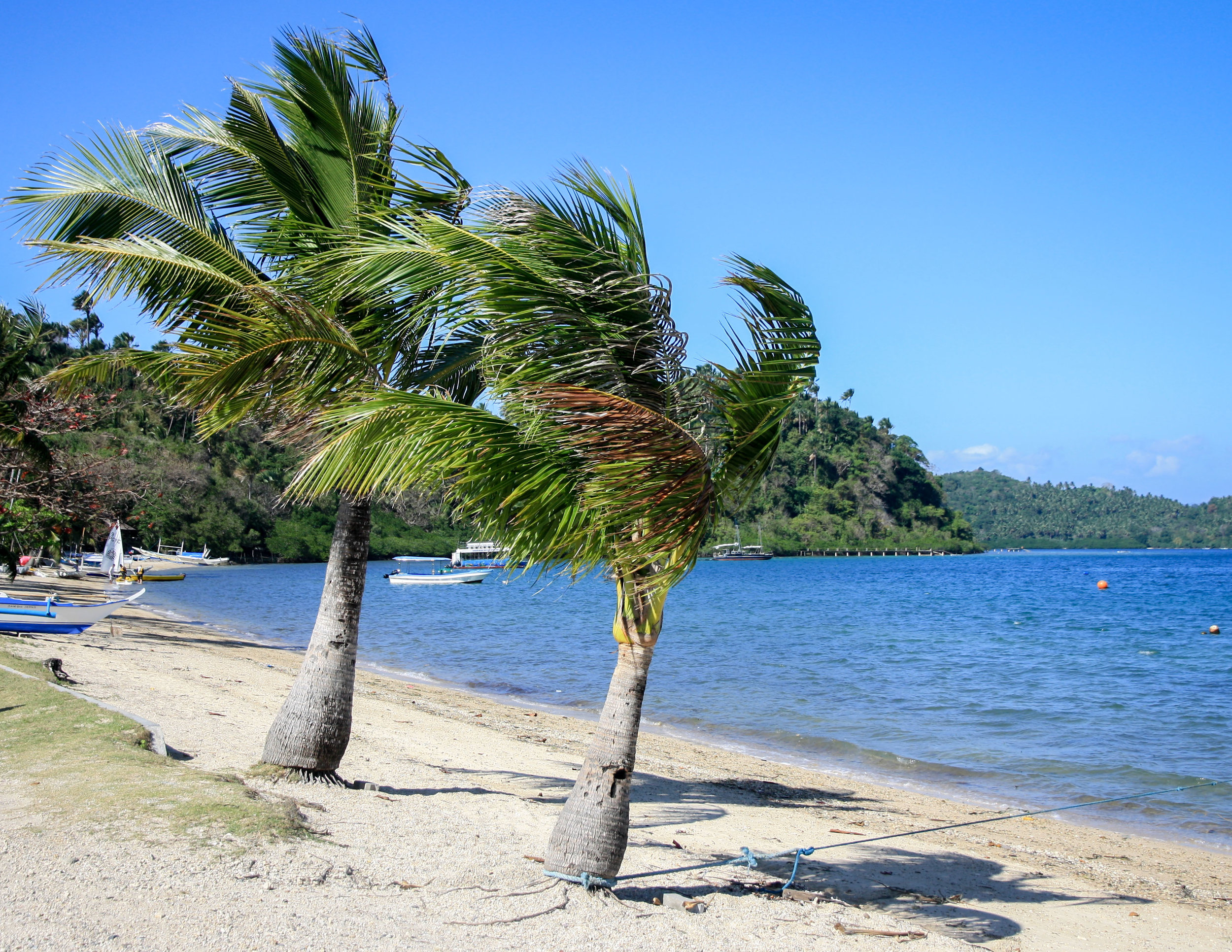 Best things to do in Luzon (The Philippines): Puerto Galera