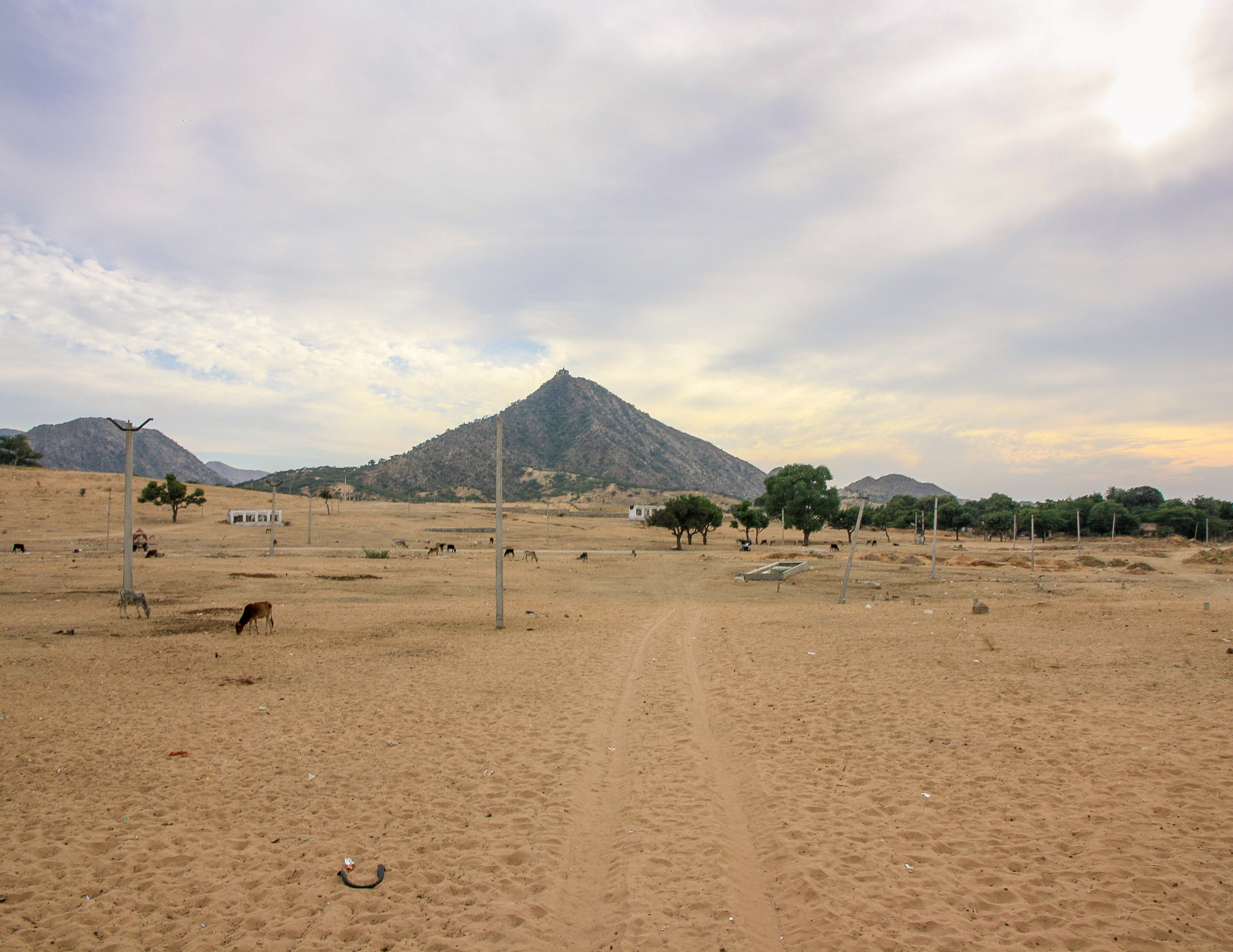 Places to visit in Rajasthan: The desert outside of Pushkar