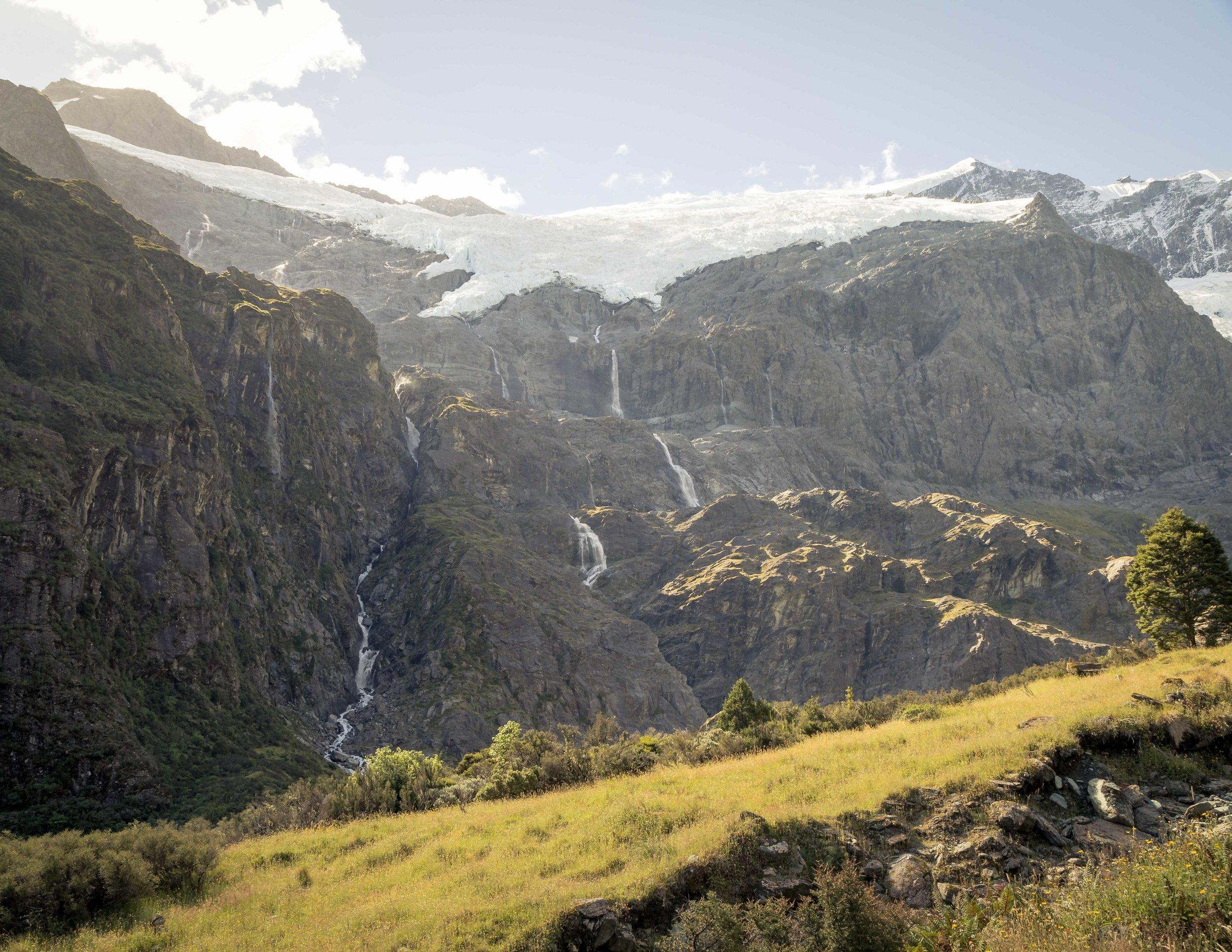 Rob Roy Glacier Track, West Coast New Zealand
