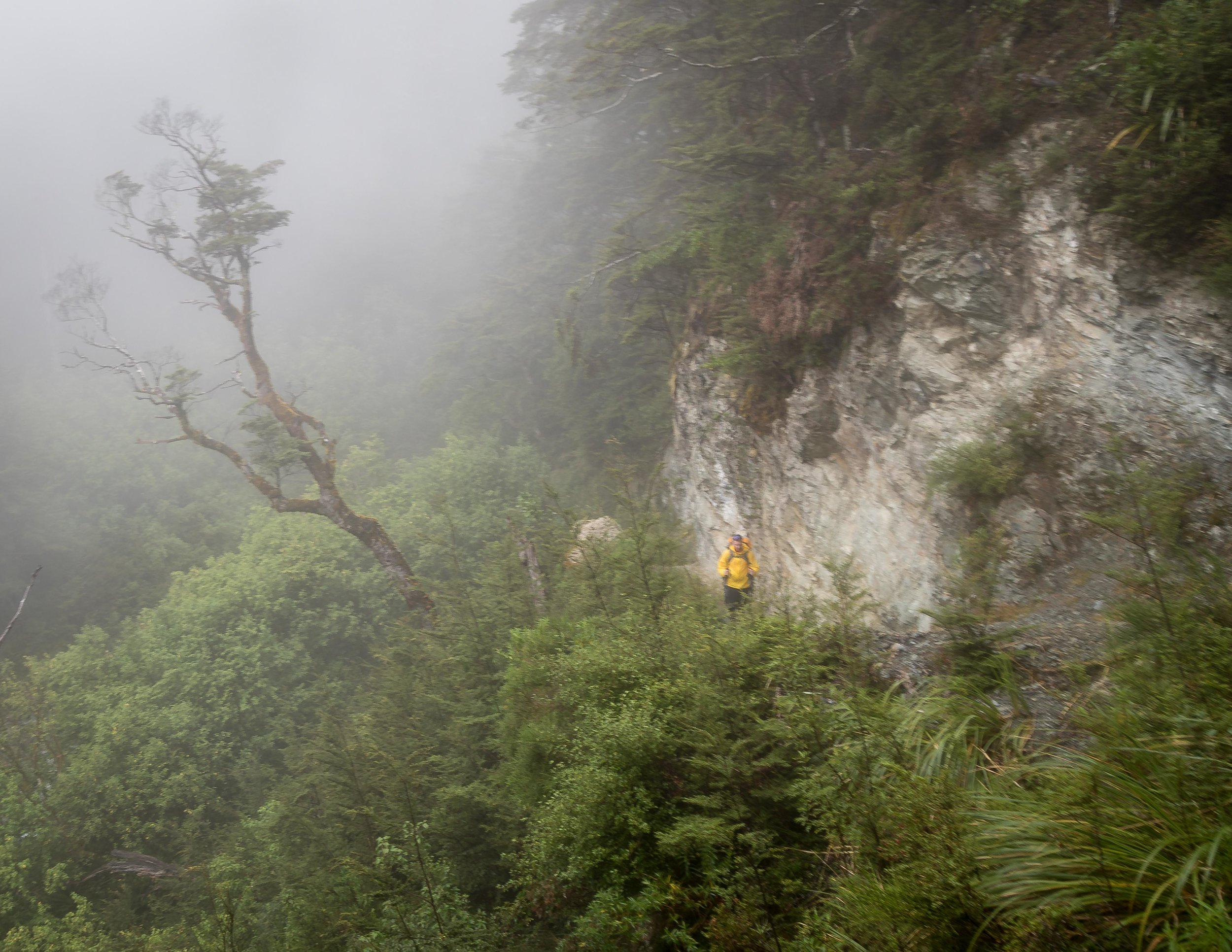The Routeburn Track: Walking in a cloud