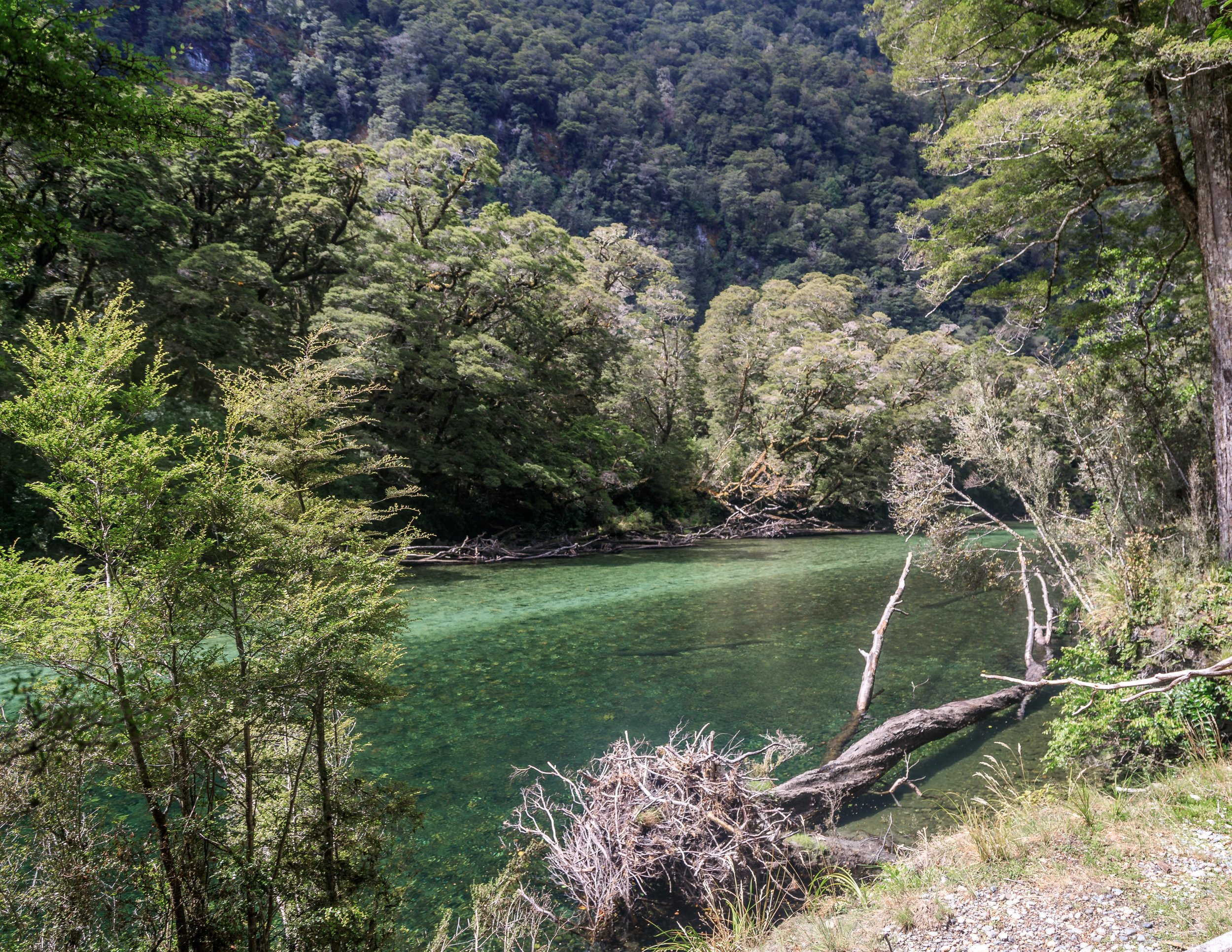 Clinton River, The Milford Track