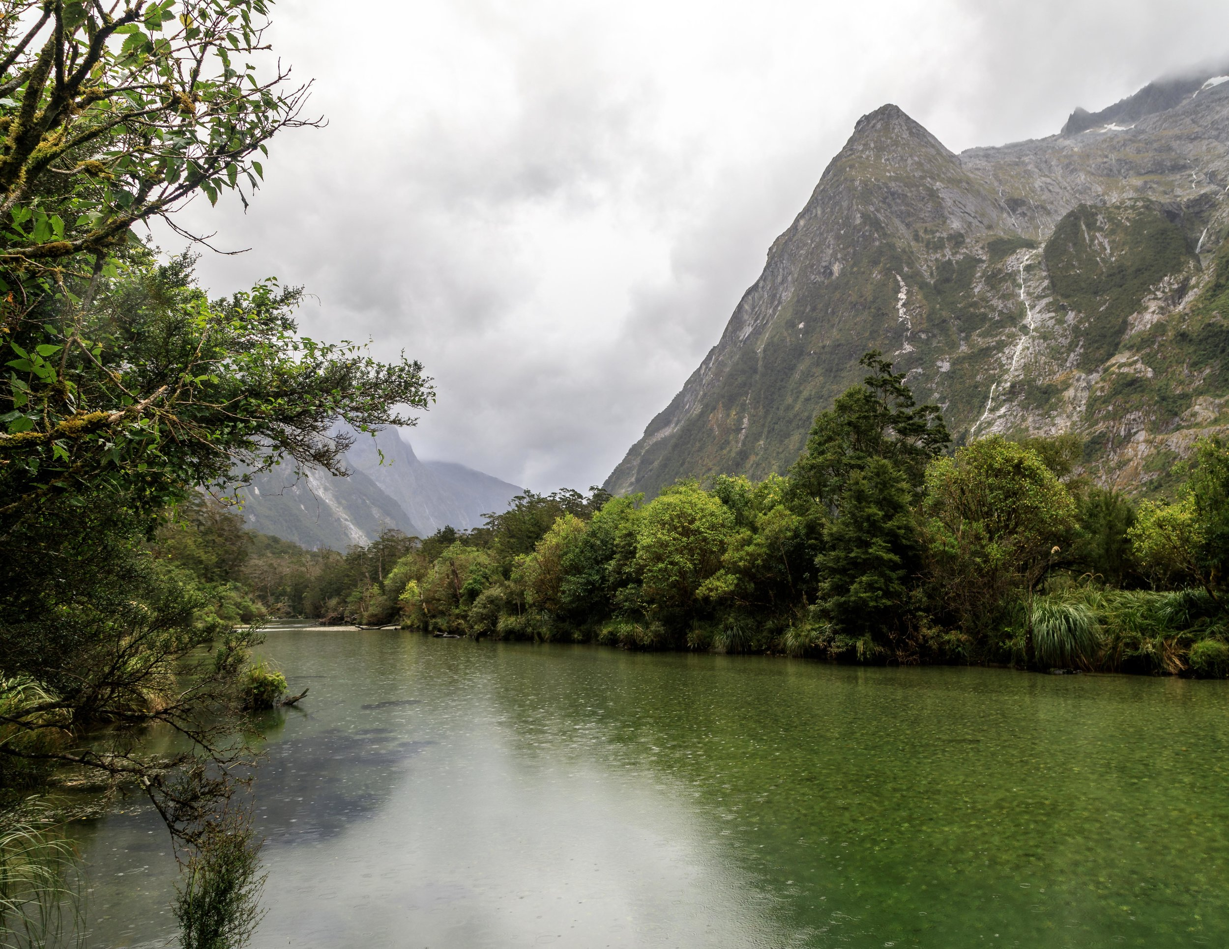 Clinton Valley, Milford Track