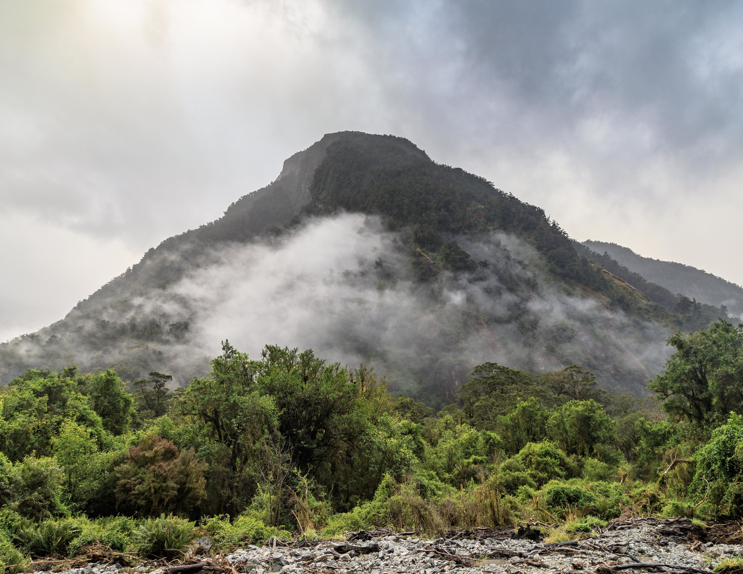 The views from Arthur River, Milford Track