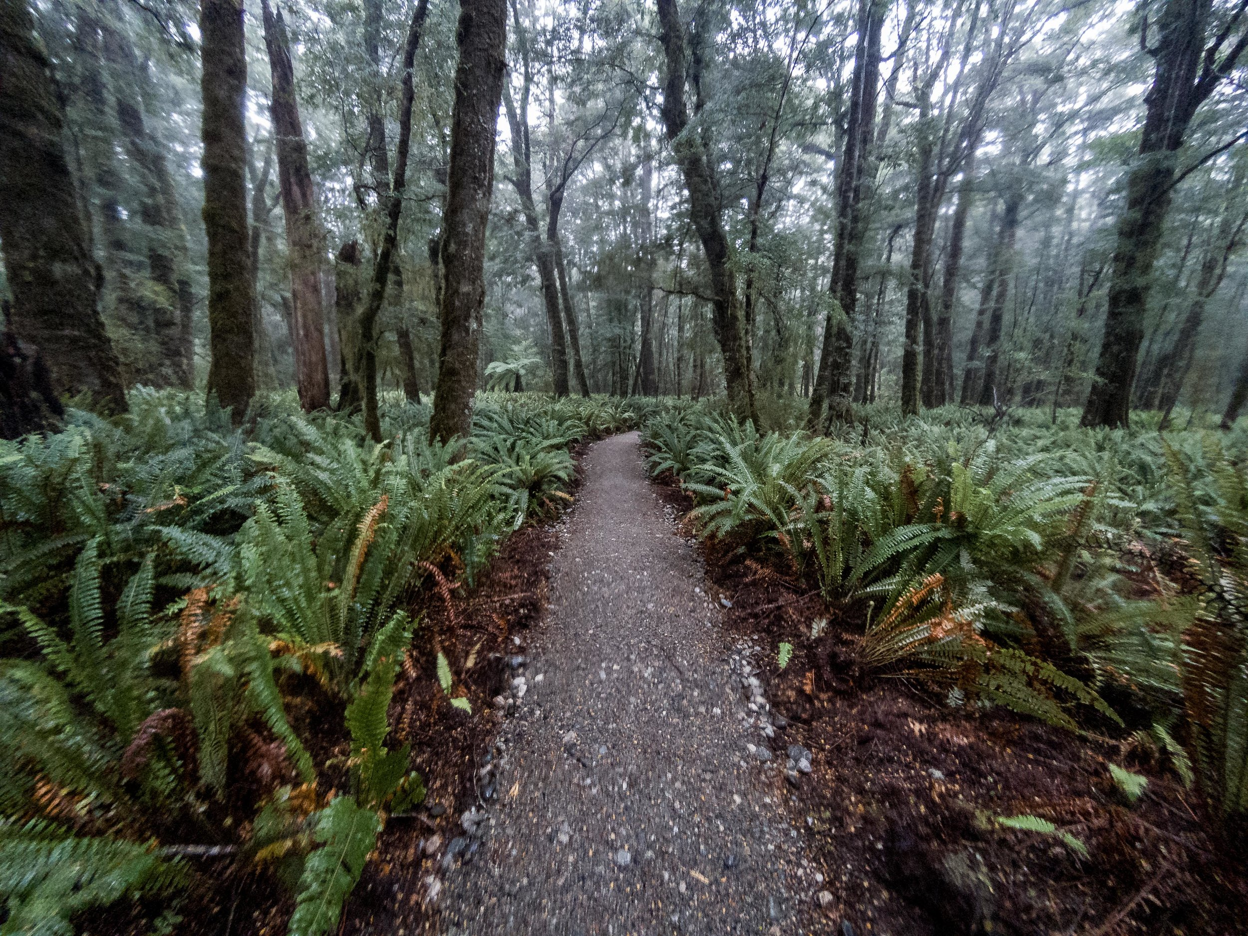 Third day of the Kepler Track