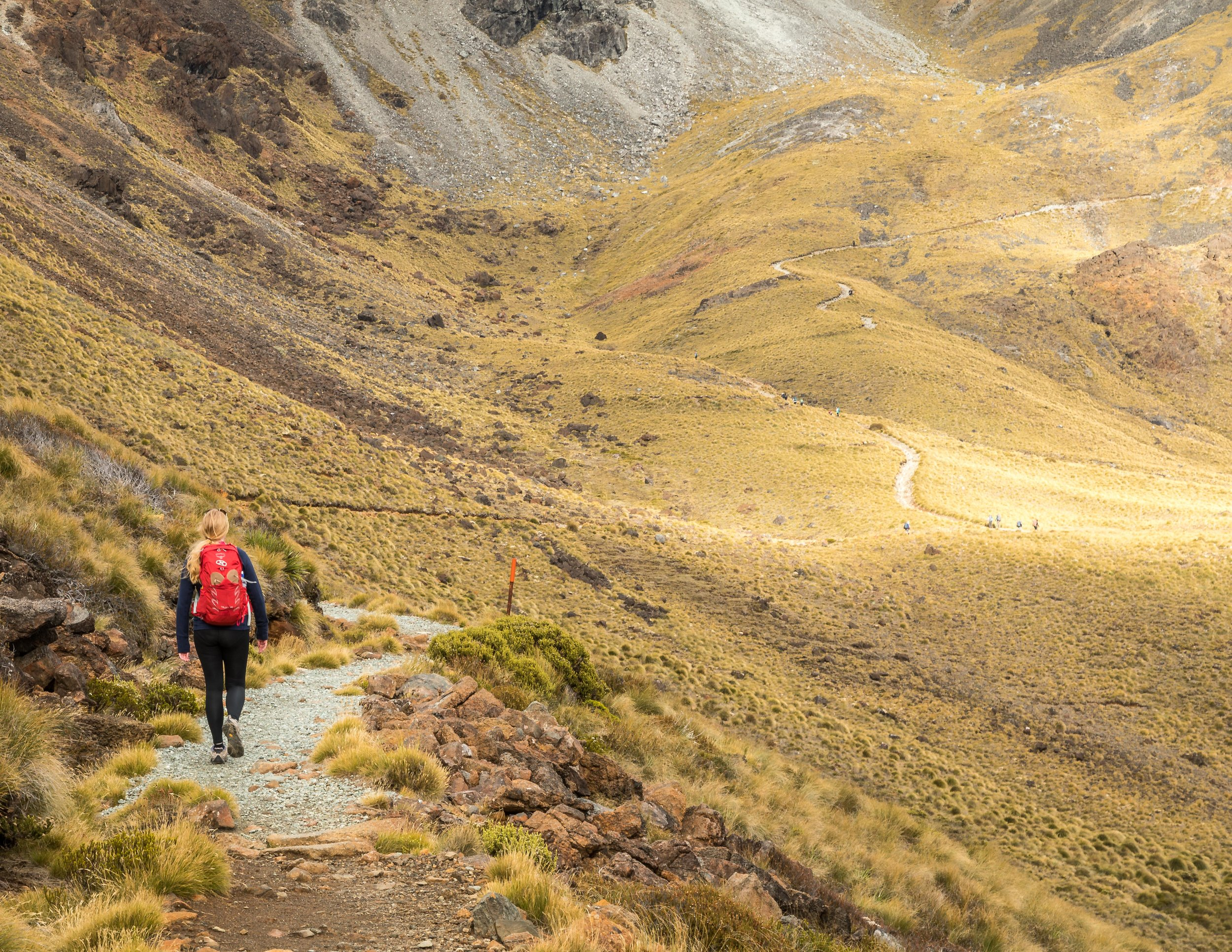 The walk to Mount Luxmore, Kepler Track