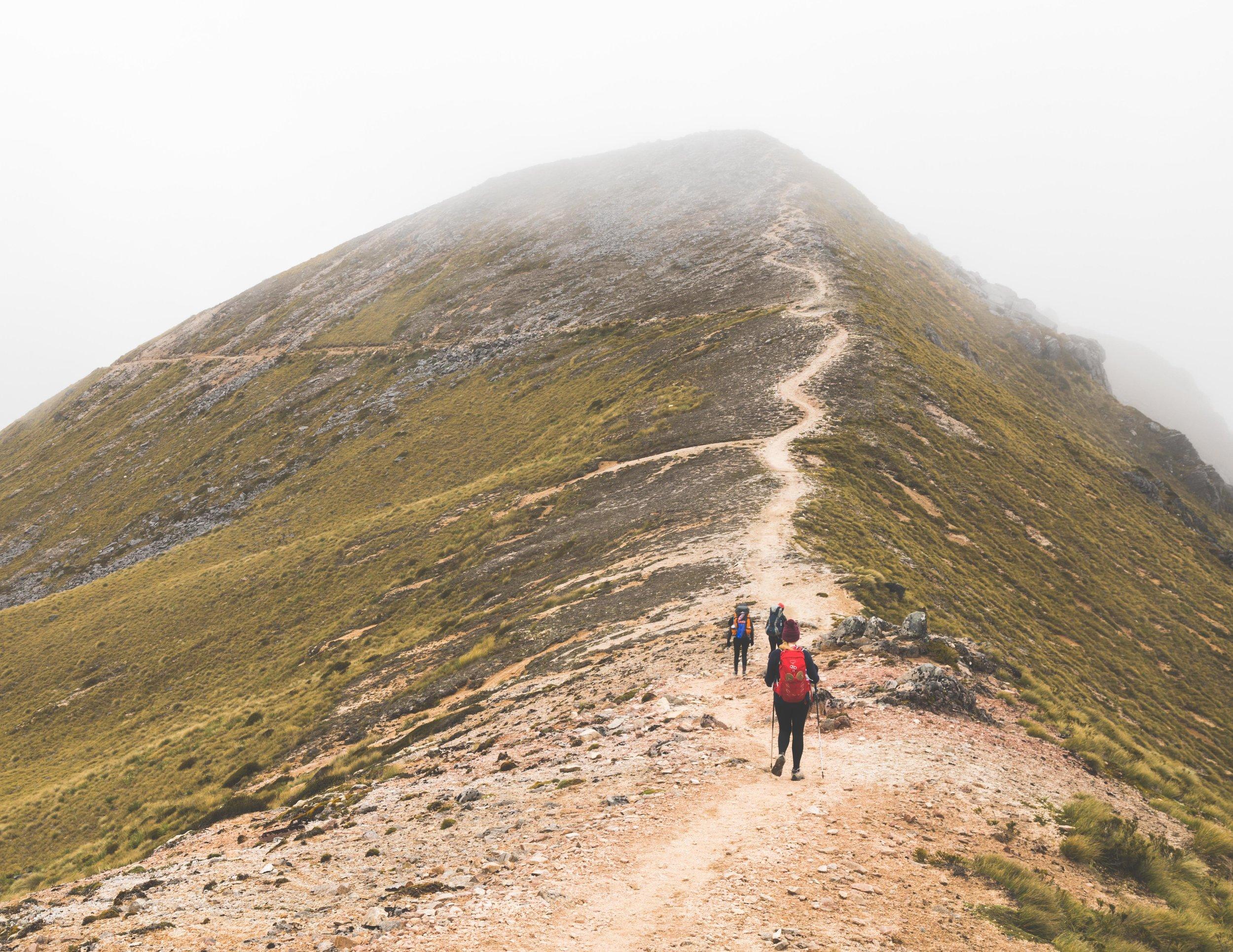Ridge walk on the Kepler Track