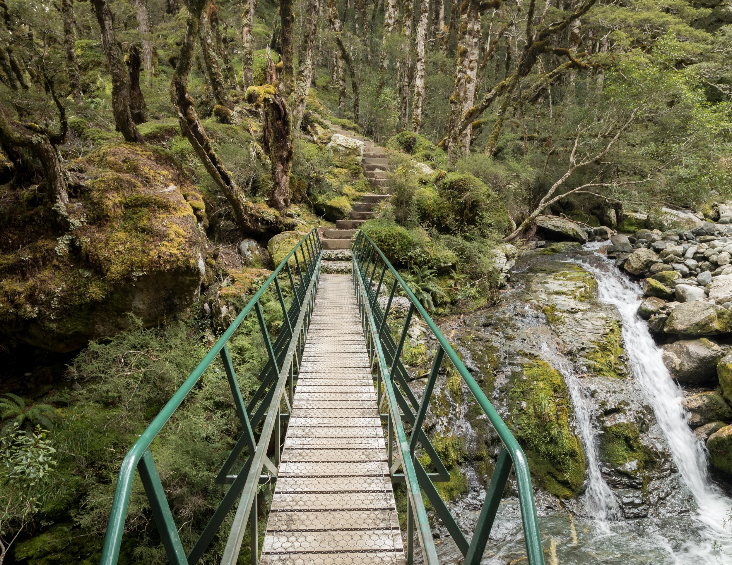 Bridge to Iris Burn
