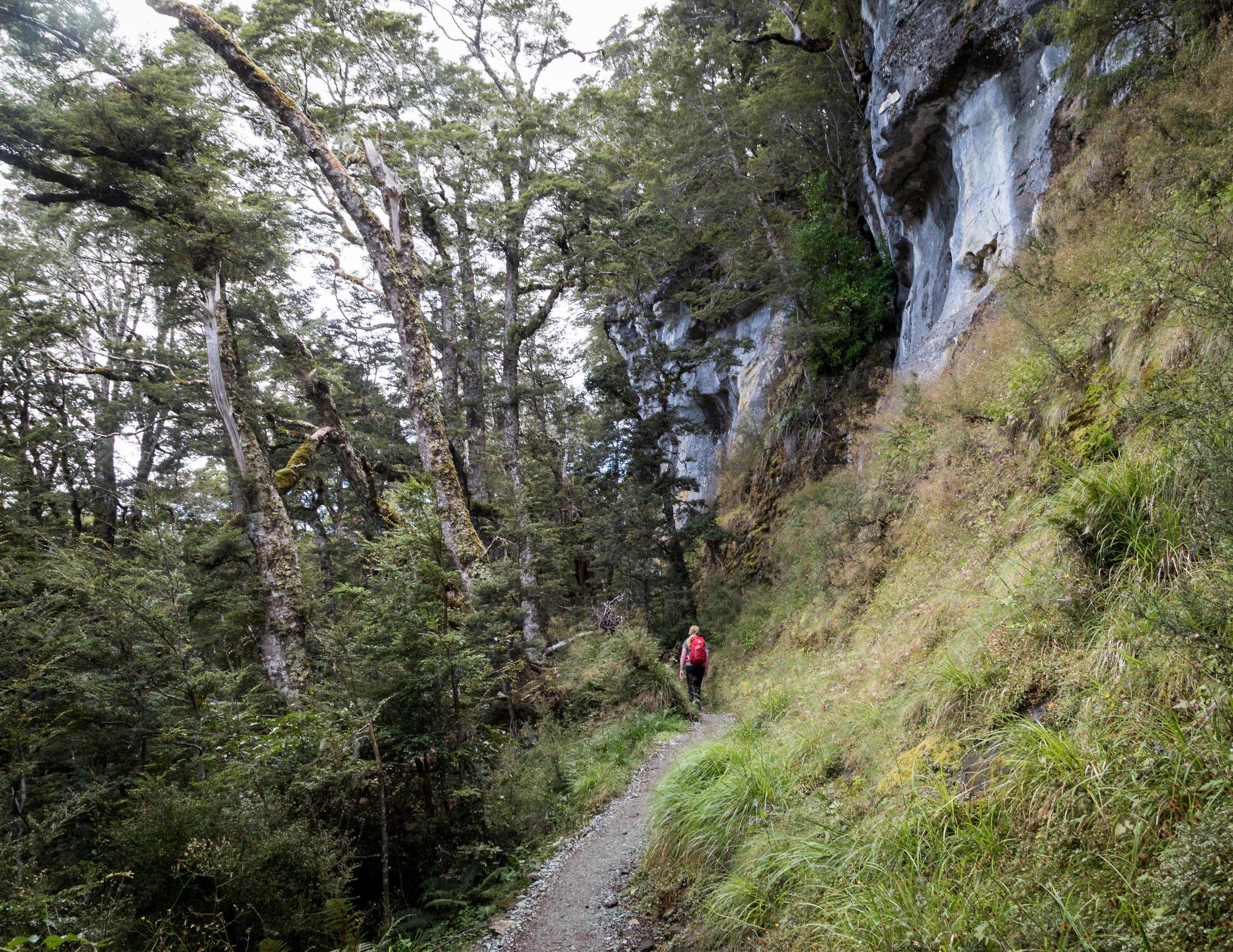 Limestone Bluffs, Kepler Track