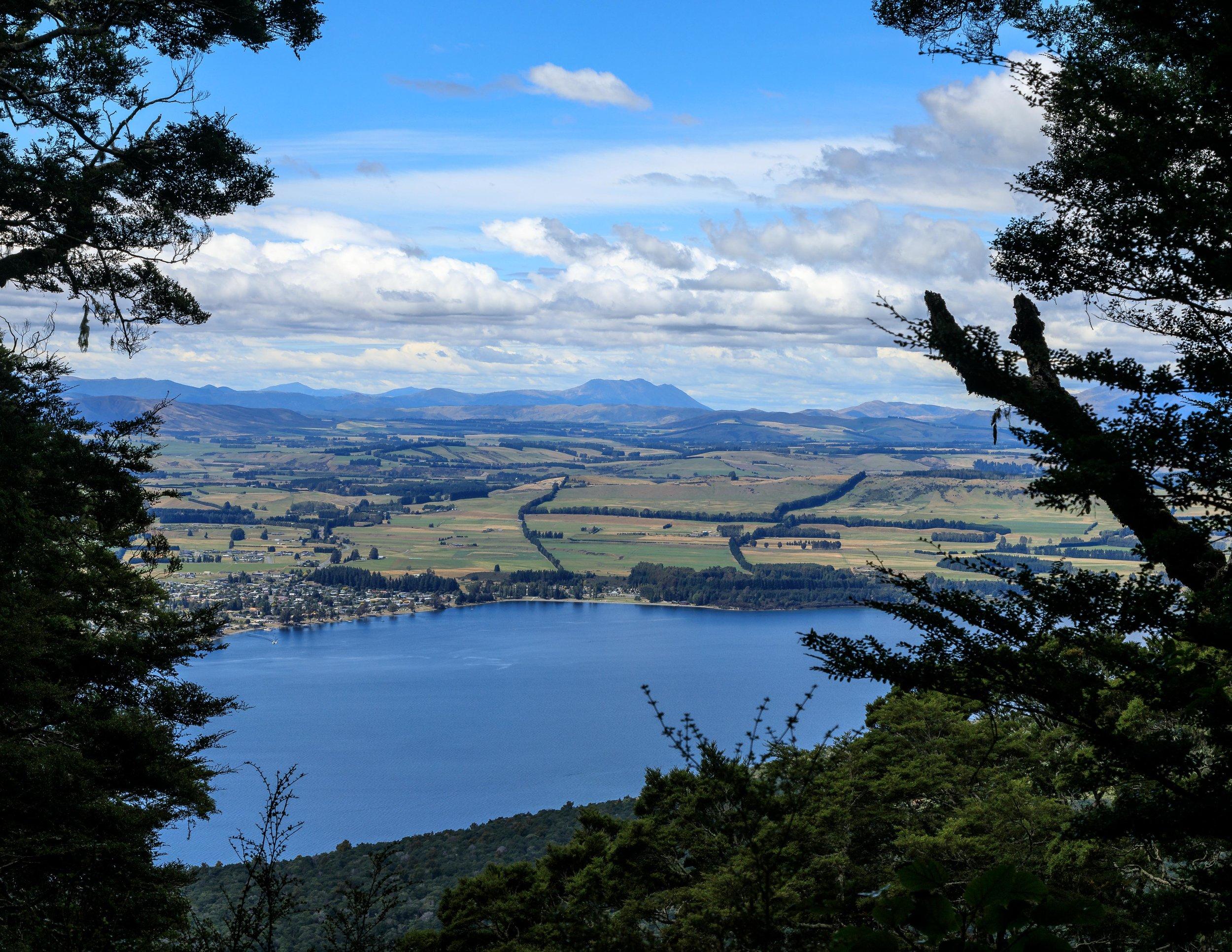 A glimpse of Lake Te Anau from the trail