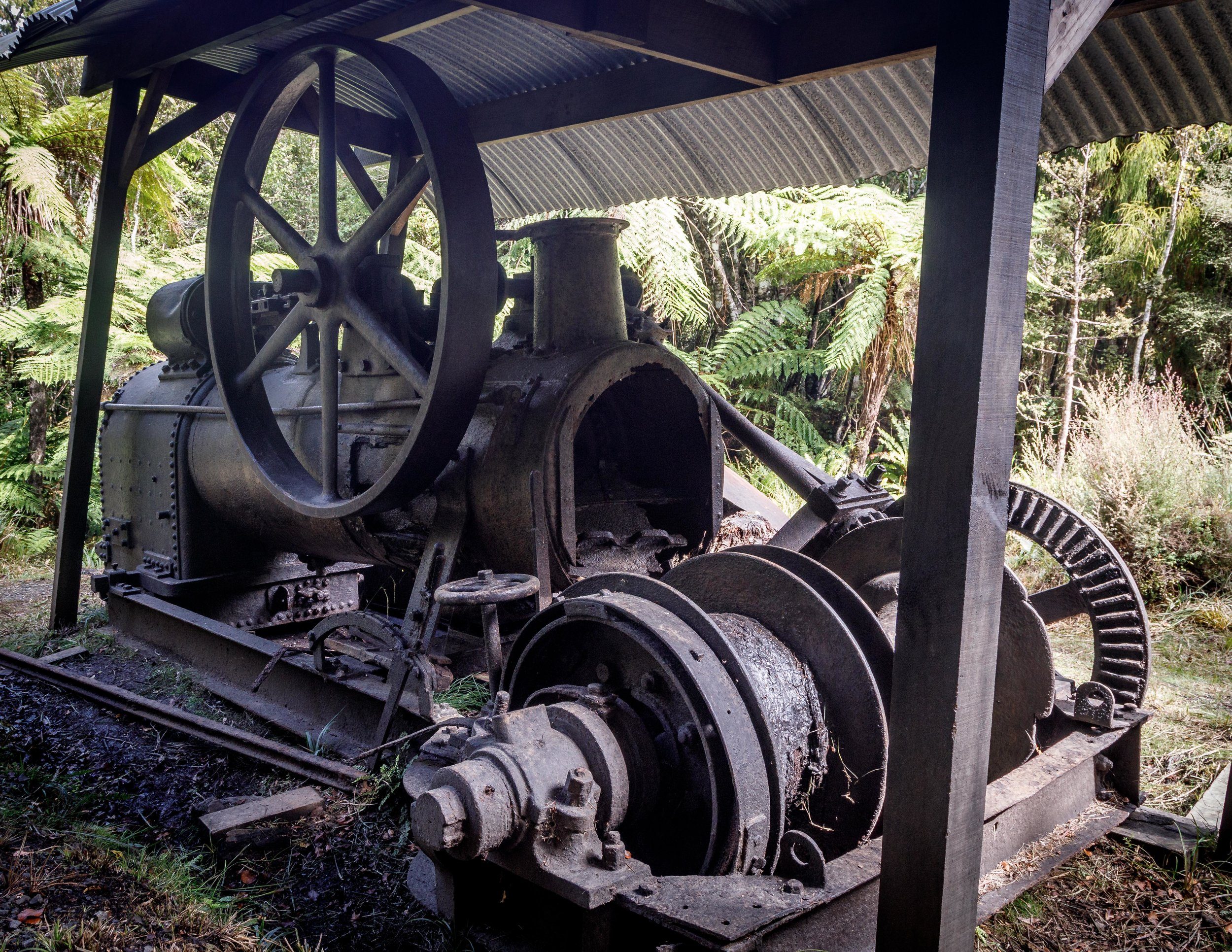Log Haulers, Rakiura Track