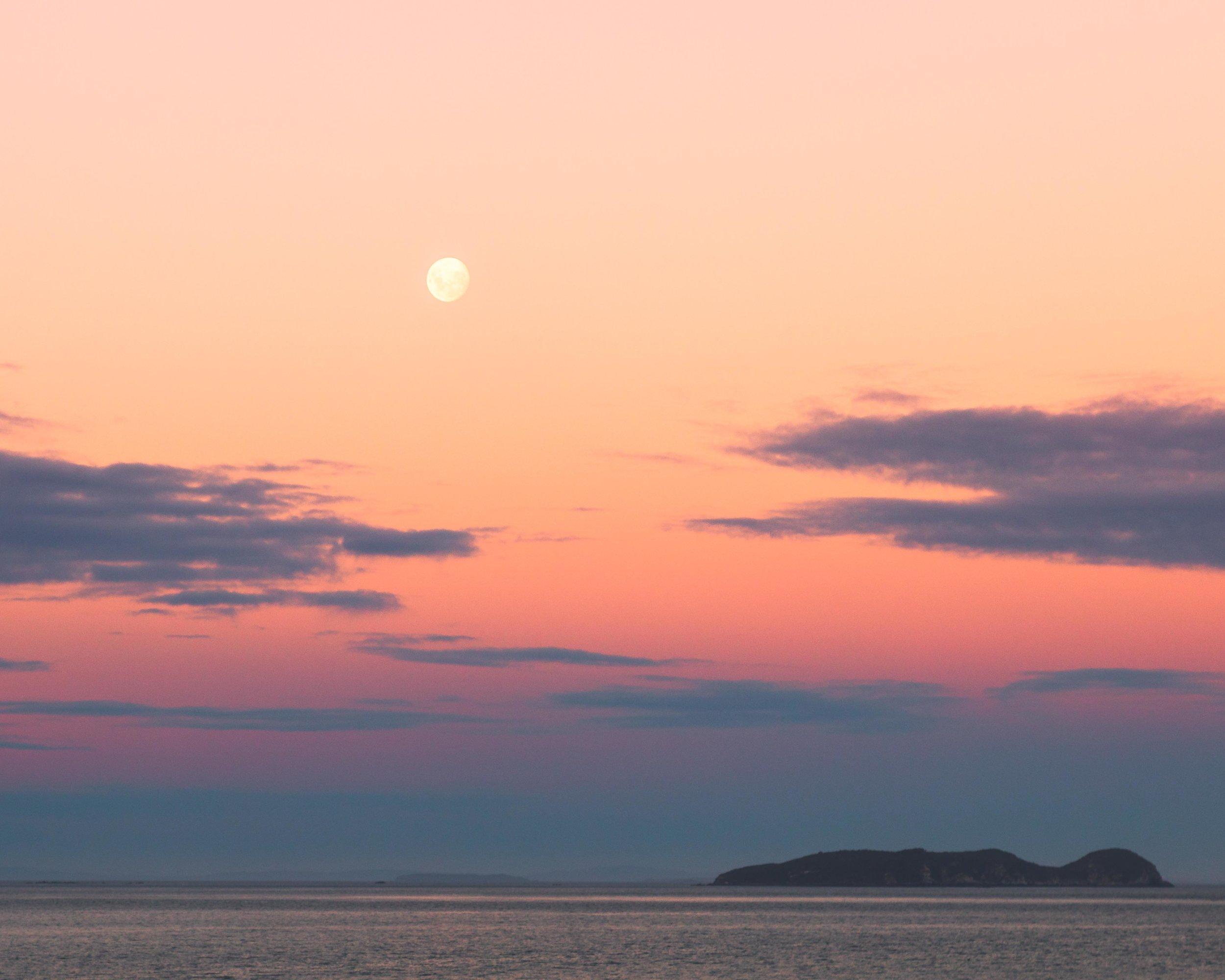 The walk to Ackers Point, Stewart Island