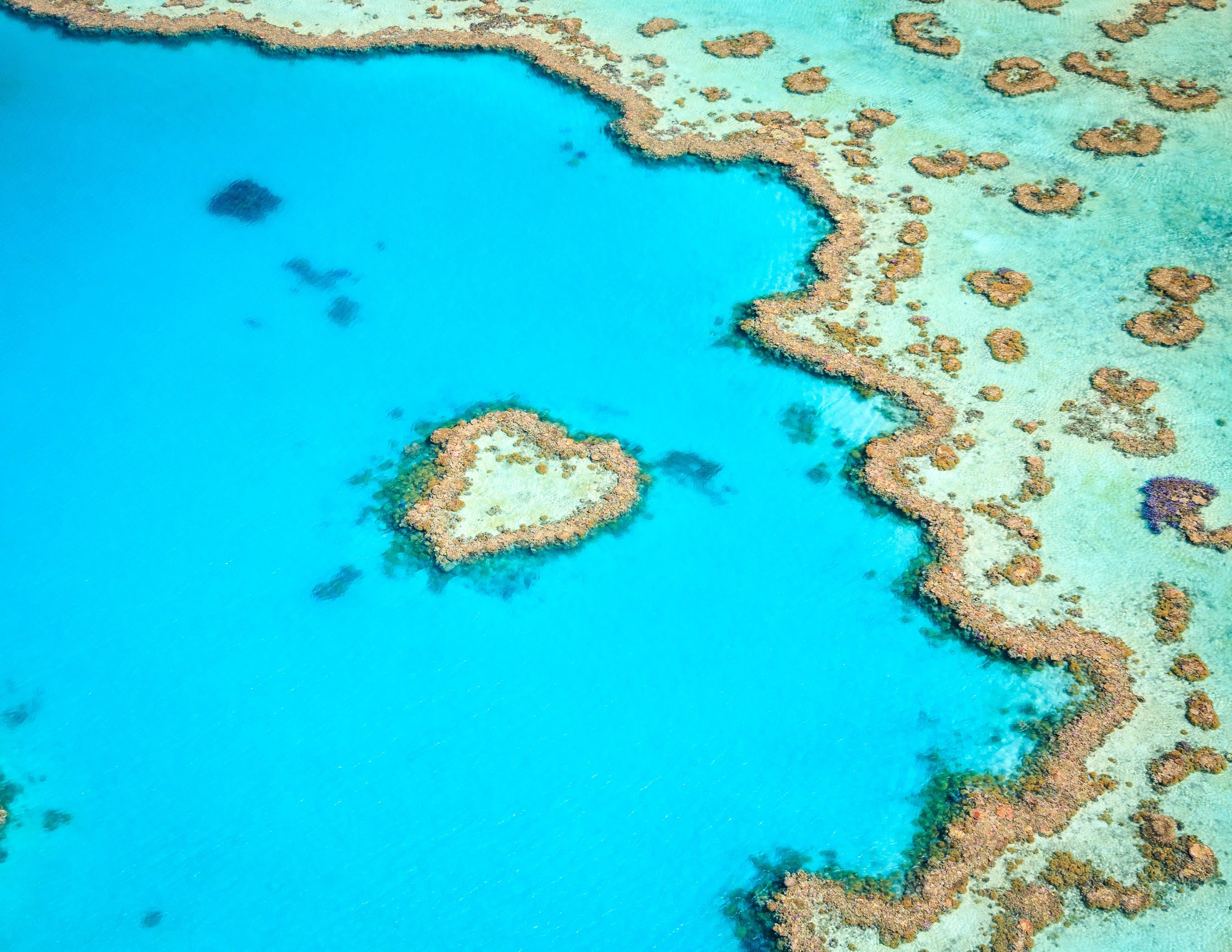 Heart Reef on the Great Barrier Reef, The Whitsundays