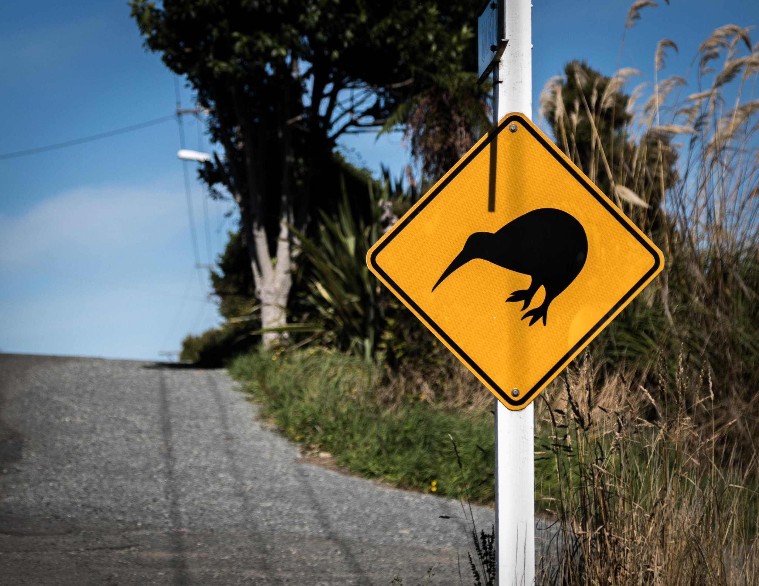 Kiwi sign, Stewart Island