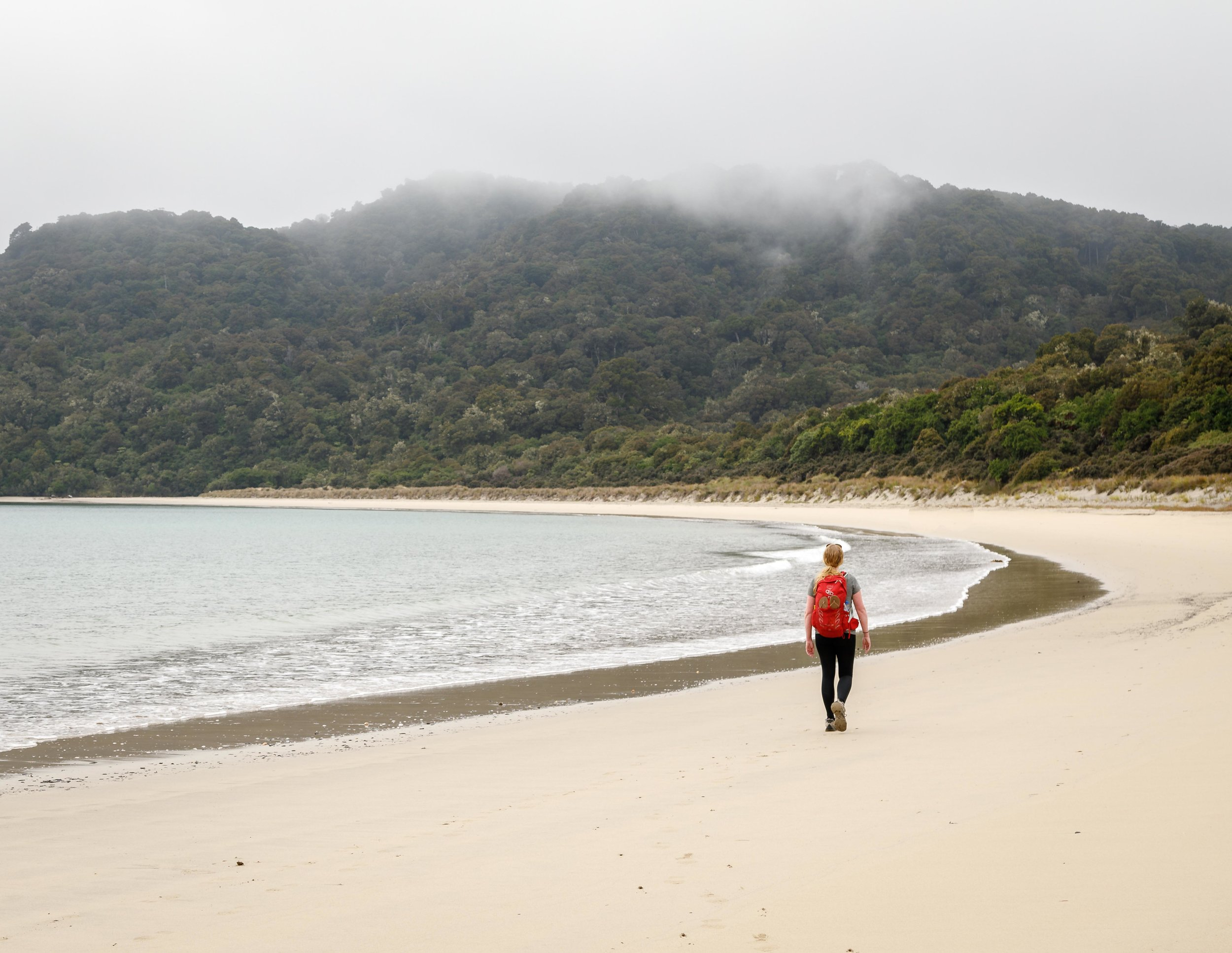 Maori Beach on the Rakiura Track