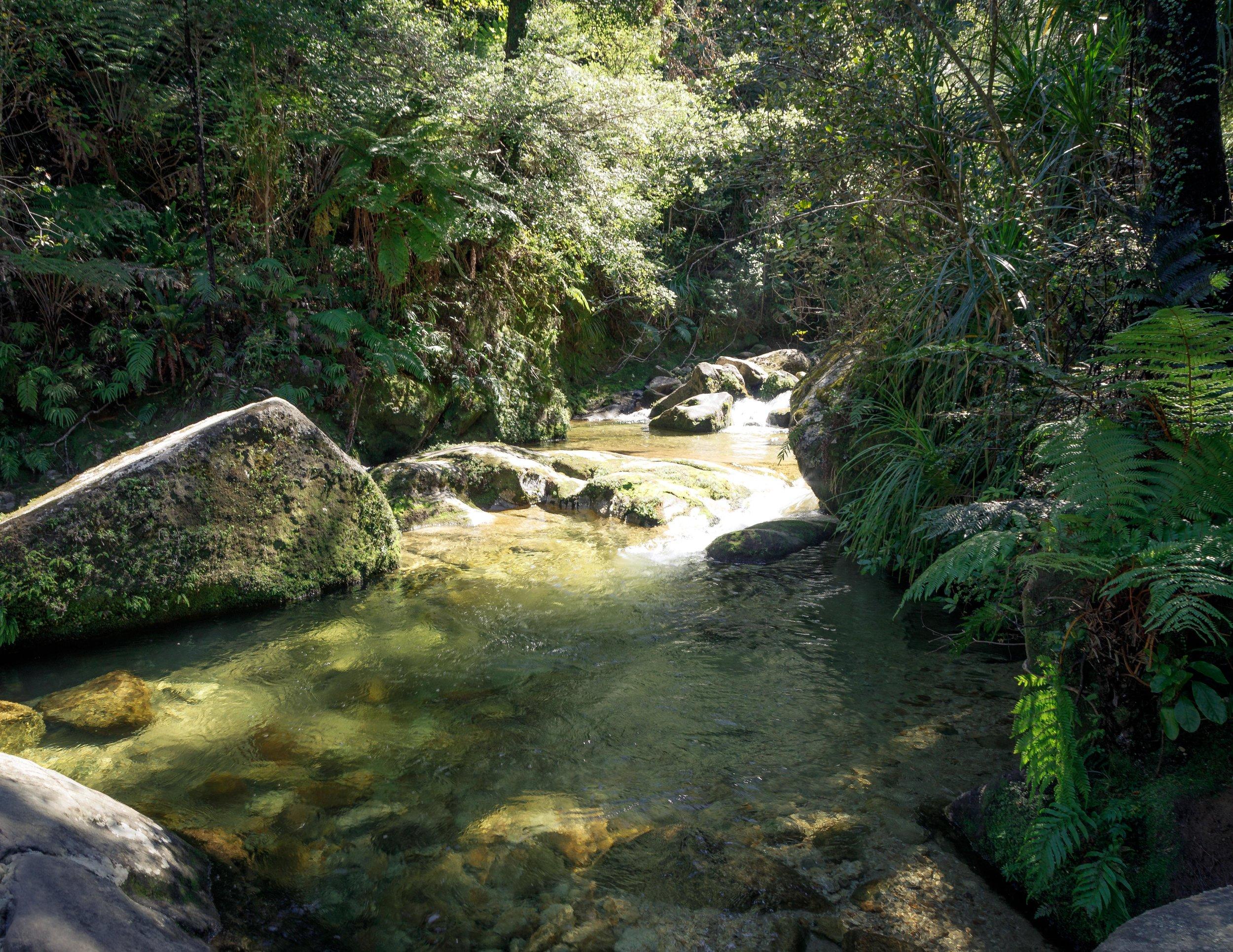 Cleopatra Pools, Abel Tasman Track