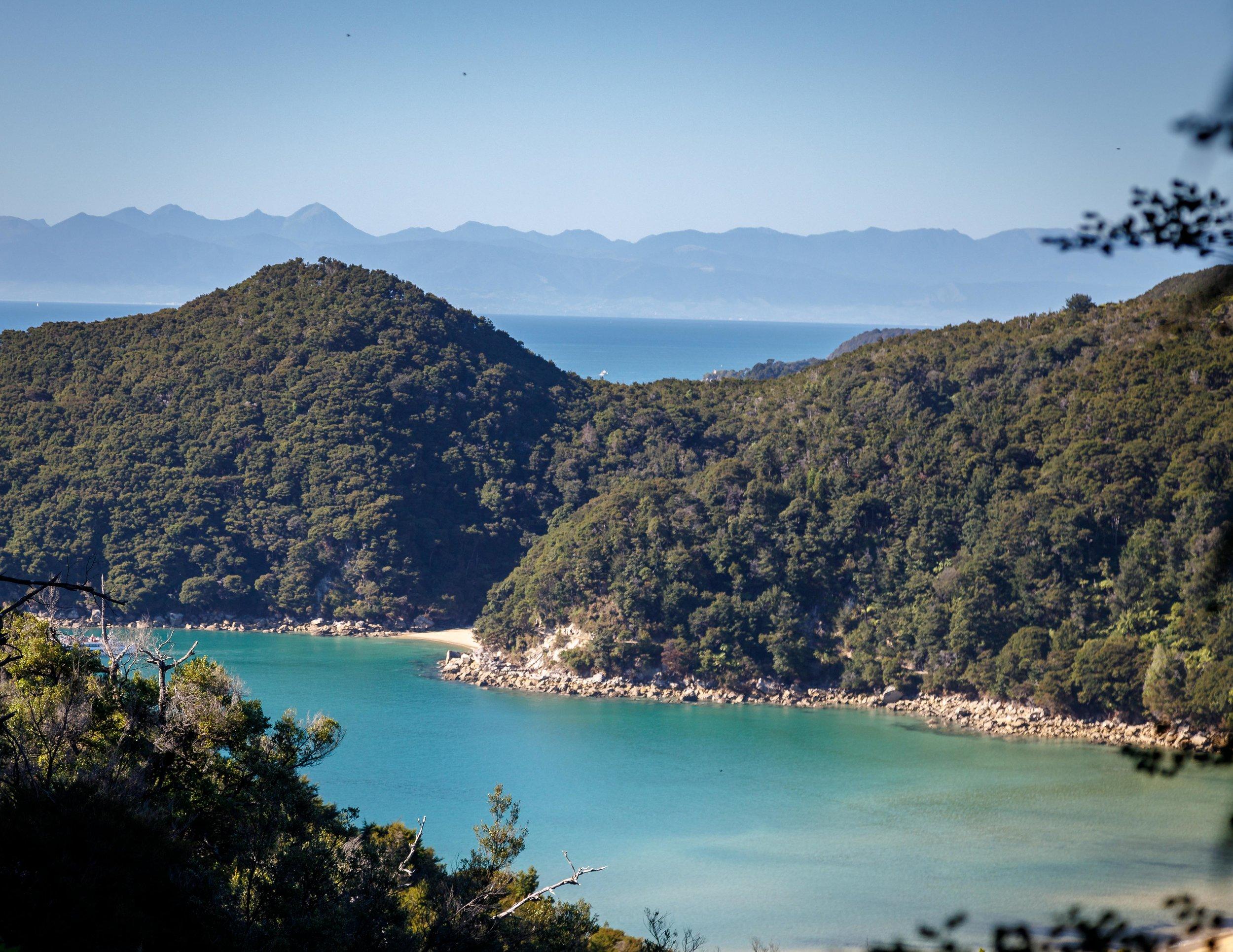 The view of Bark Bay, Abel Tasman Track