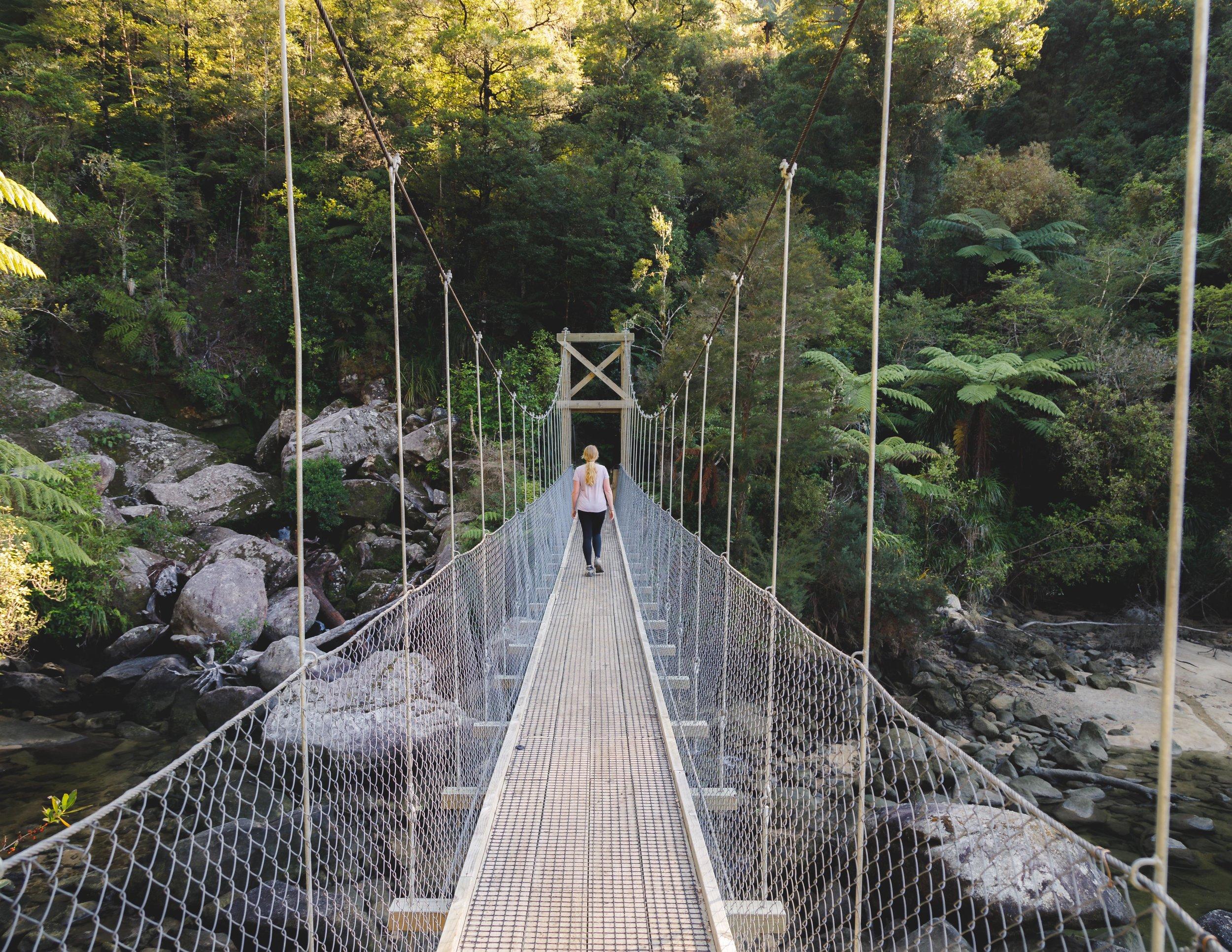 The suspension bridge near Bark Bay, Abel Tasman