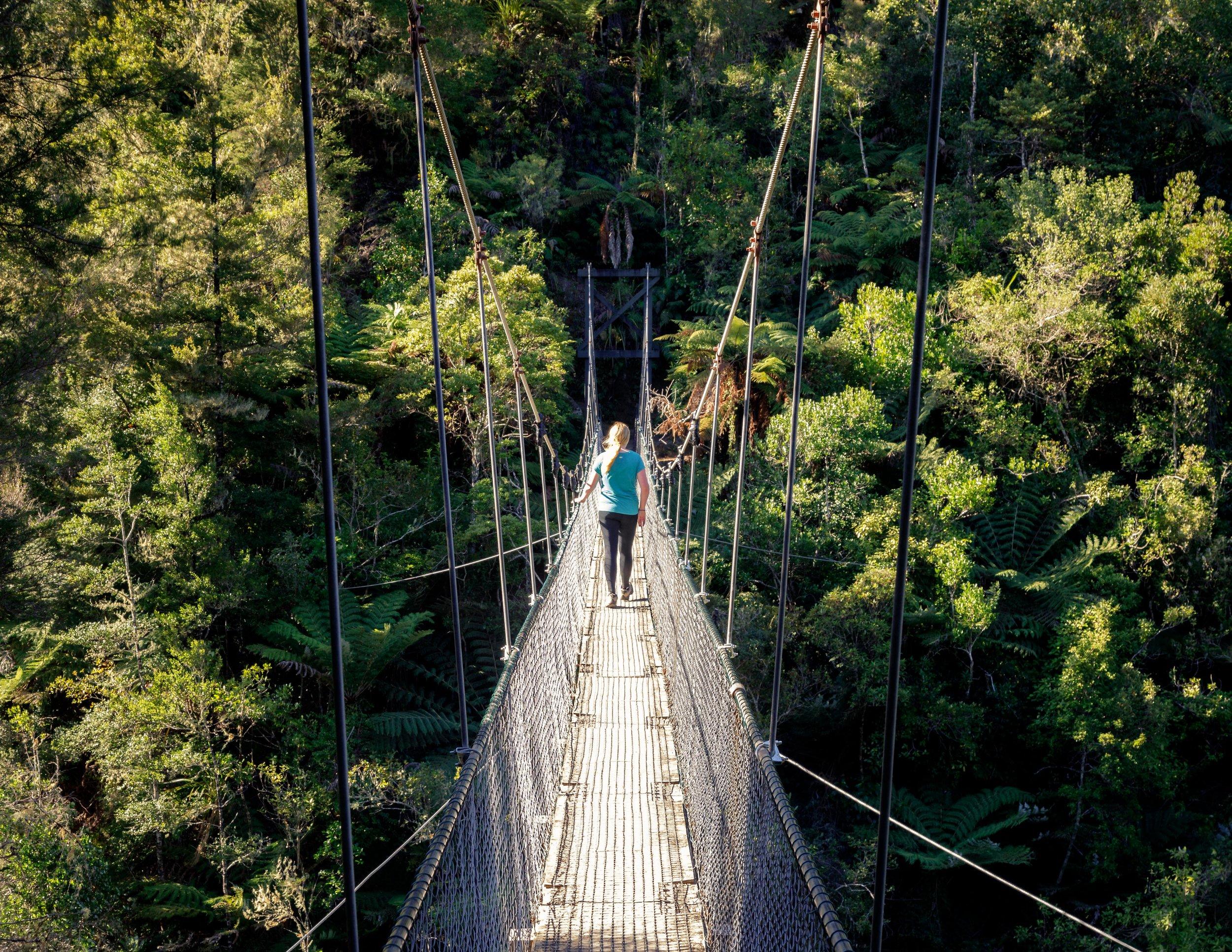 One of the many suspension bridges on the Abel Tasman Track