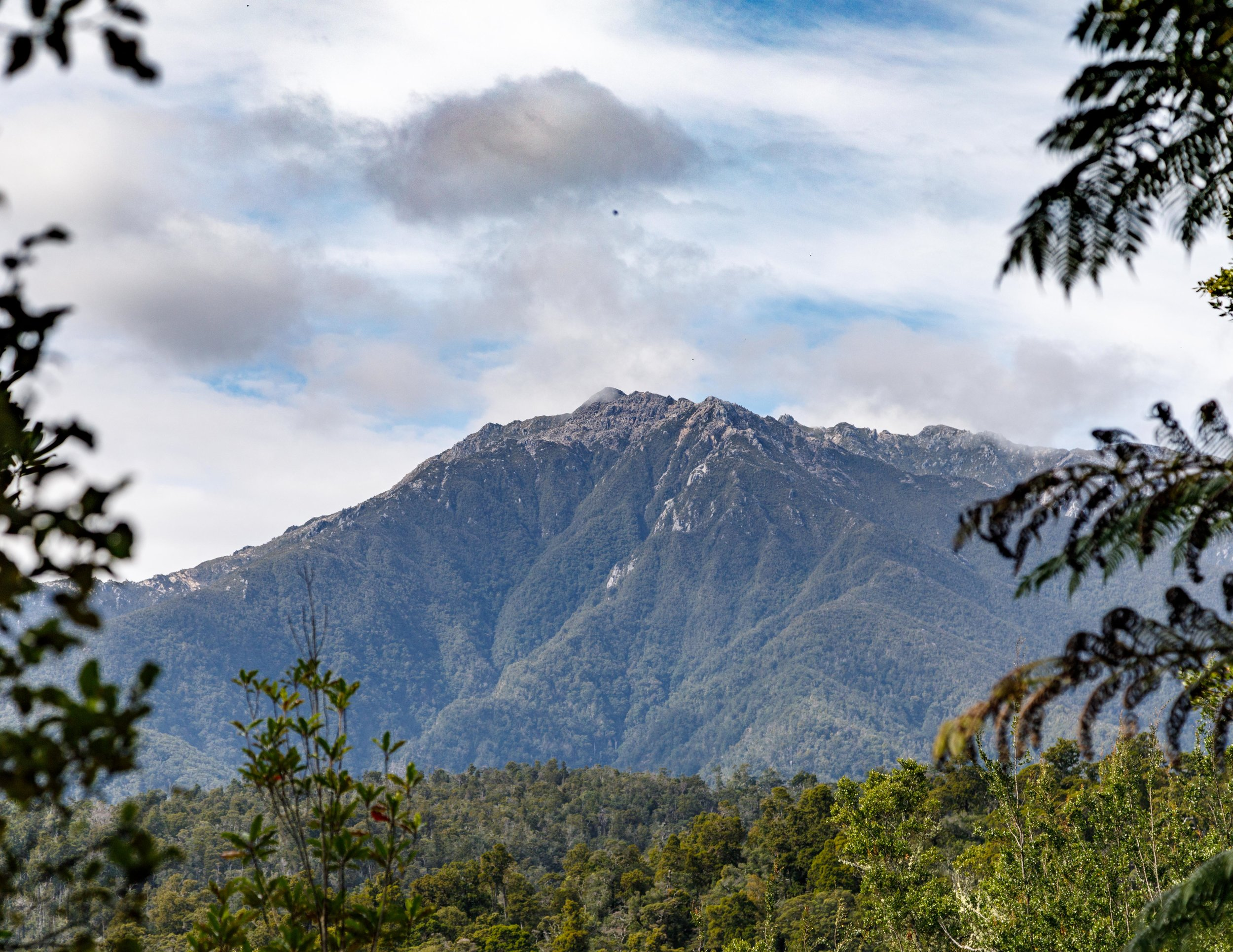 The Dragon Tooth Mountains: The Heaphy Track