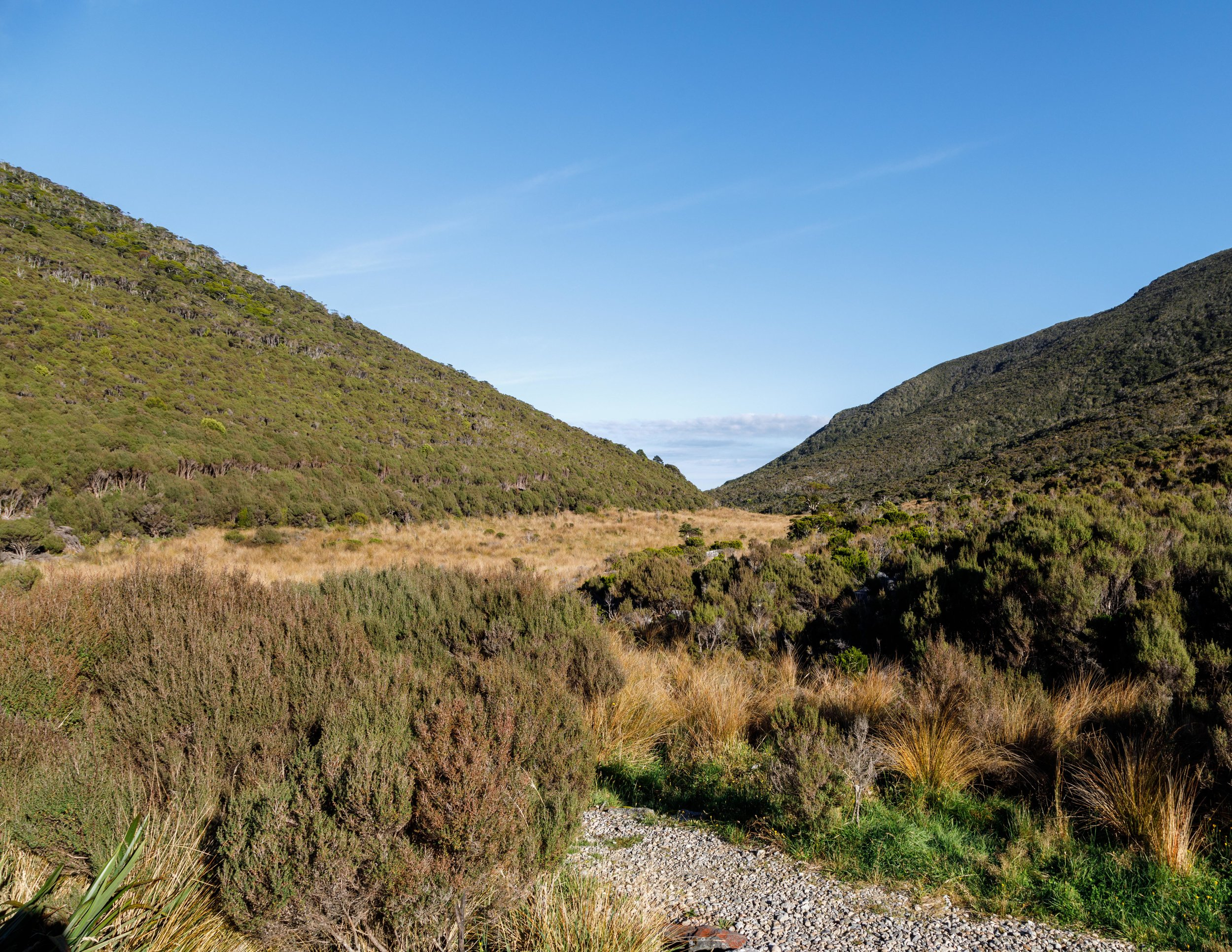 The view of the start of day two, Heaphy Track
