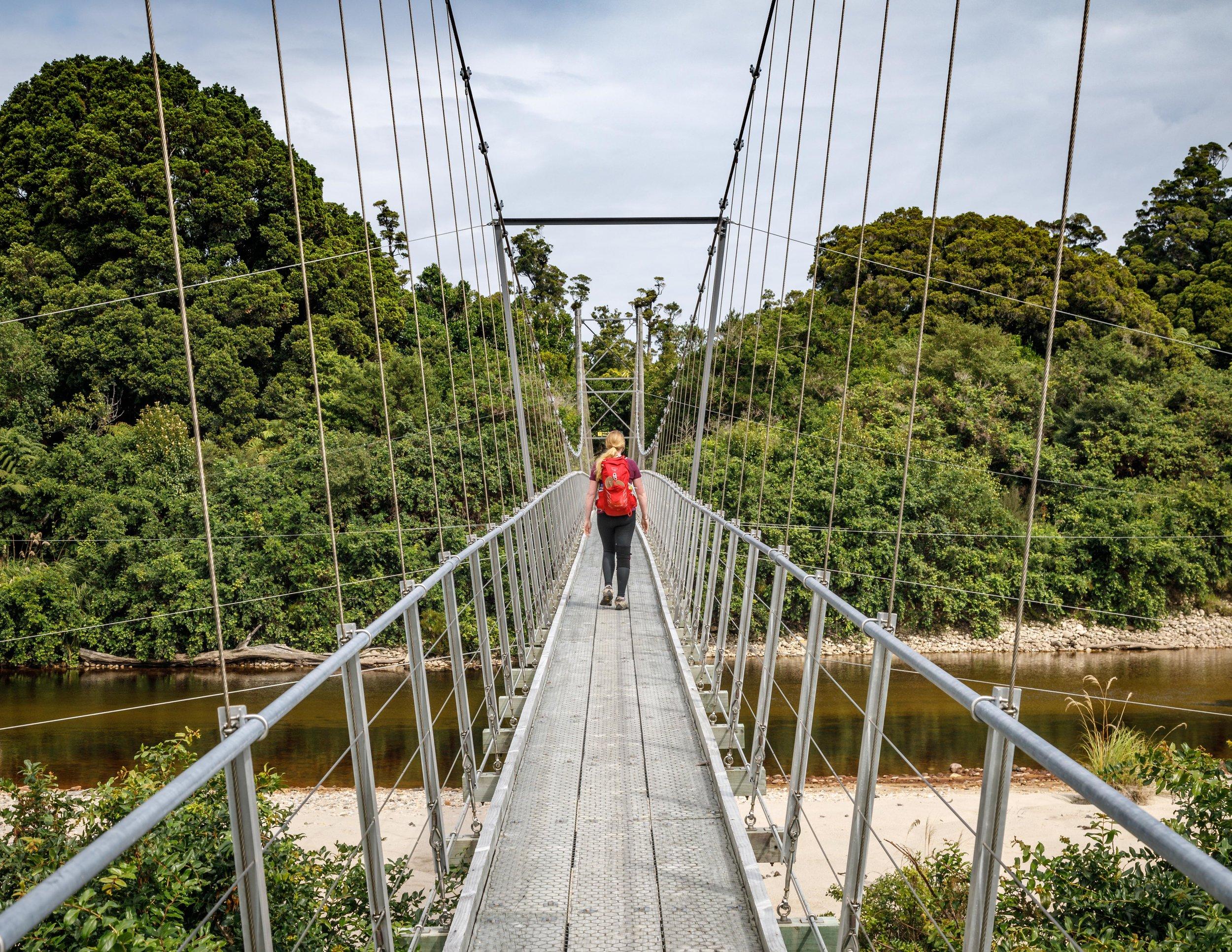 Swing bridge after Lewis Hut, Heaphy Track