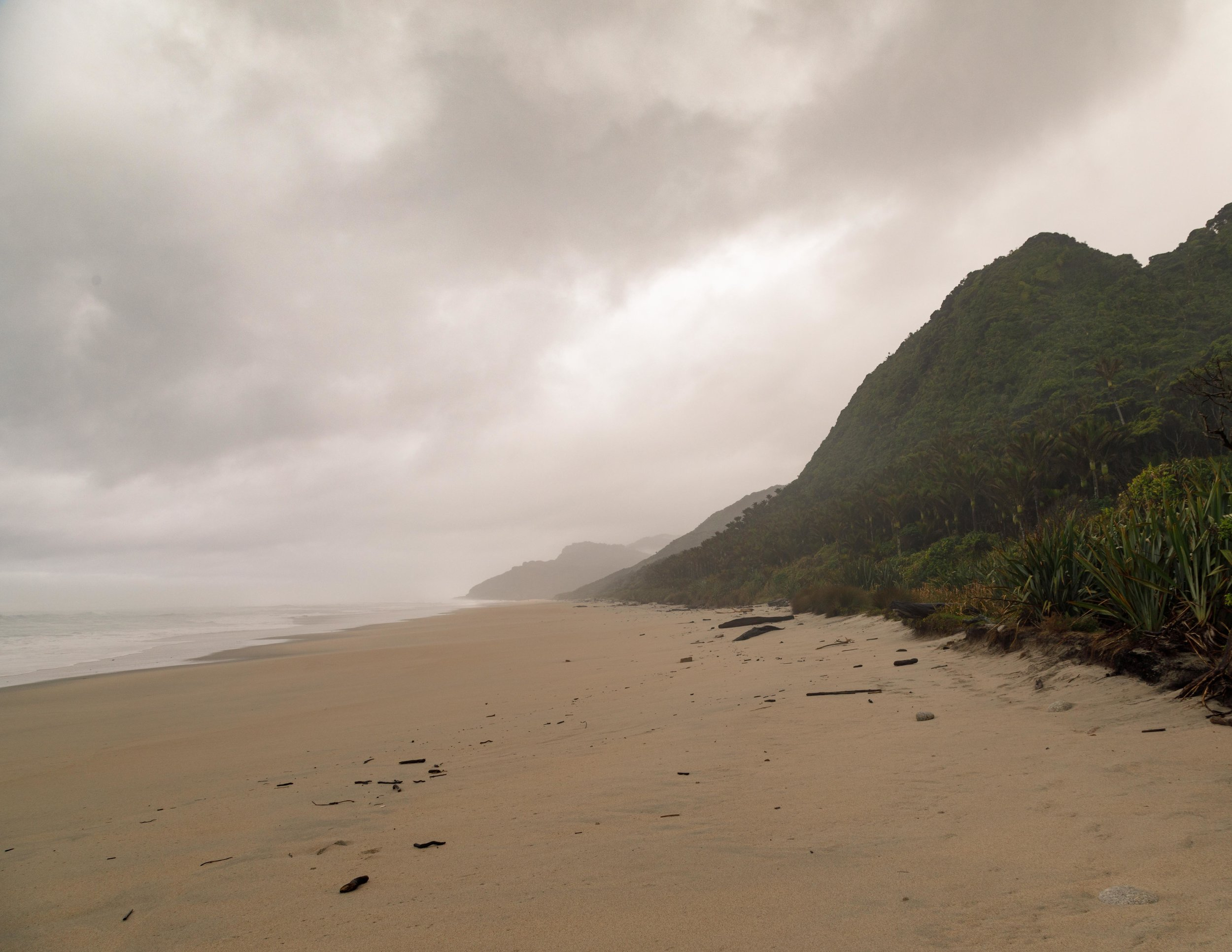 West Coast on the Heaphy Track