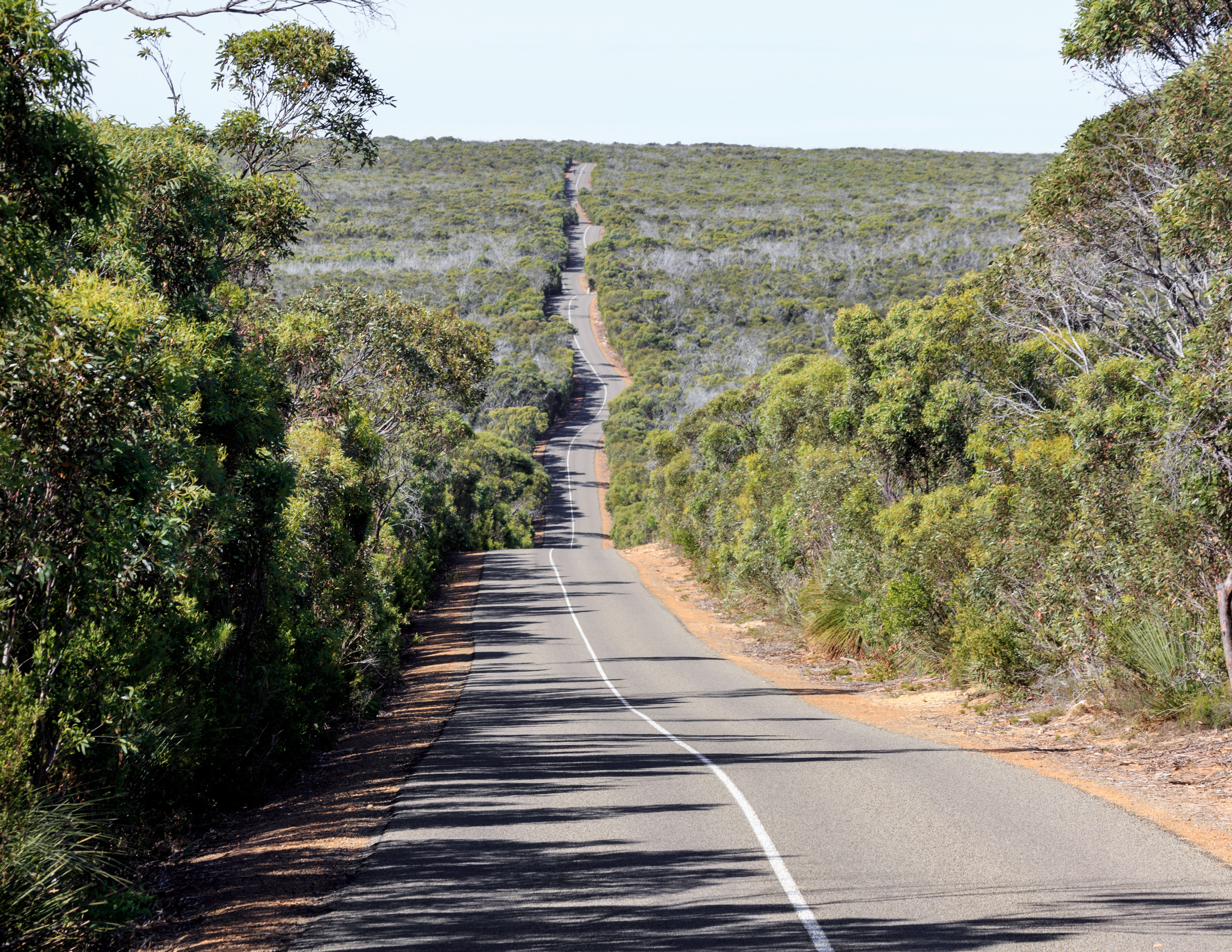 One of the roads in Flinders Chase National Park, Kangaroo Island