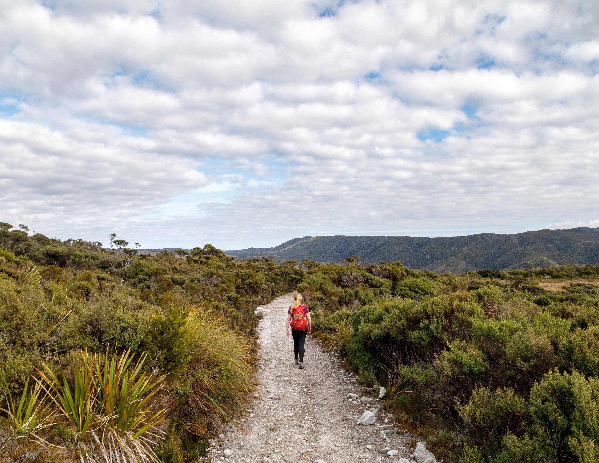 The track to Gouland Downs Hut