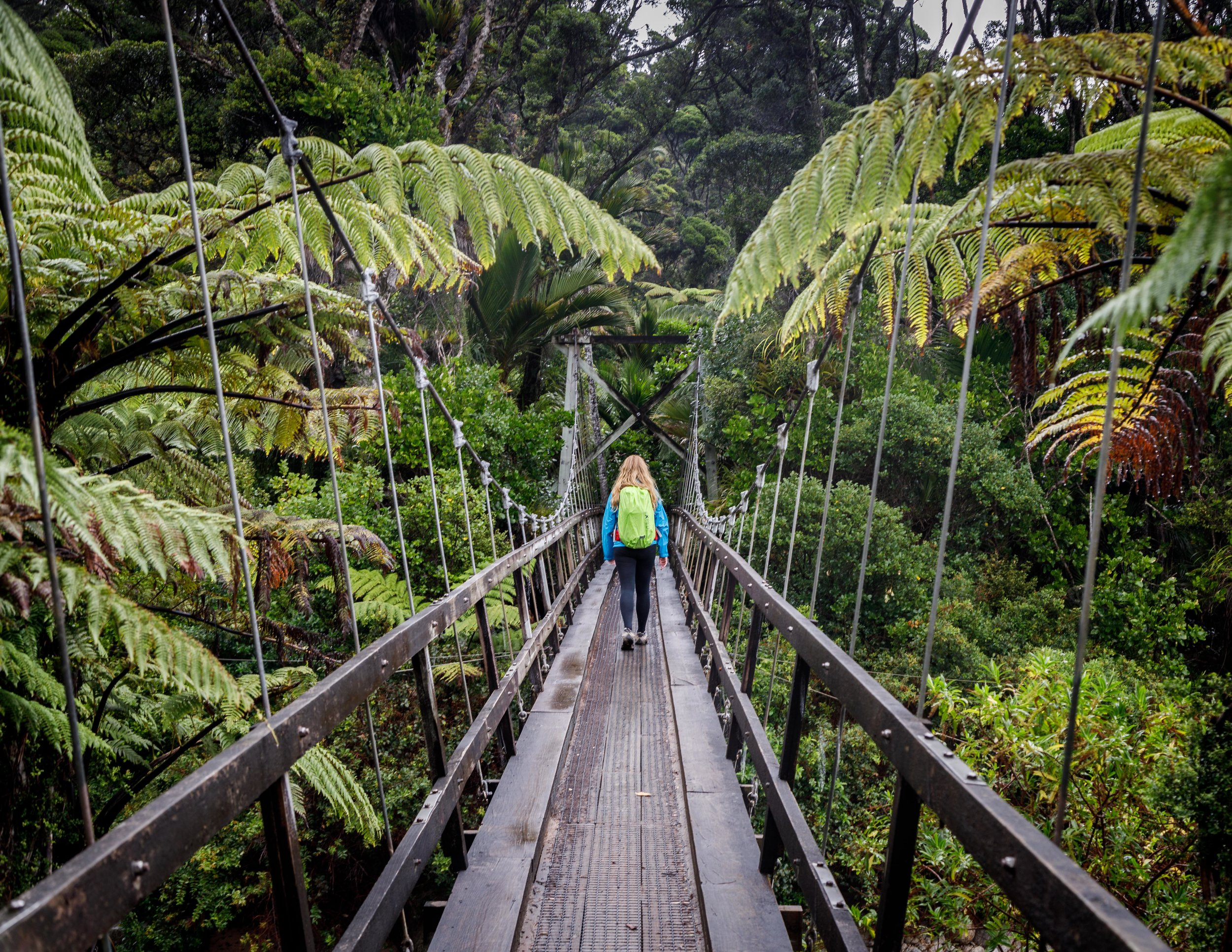 Bridges on day four of the Heaphy Track