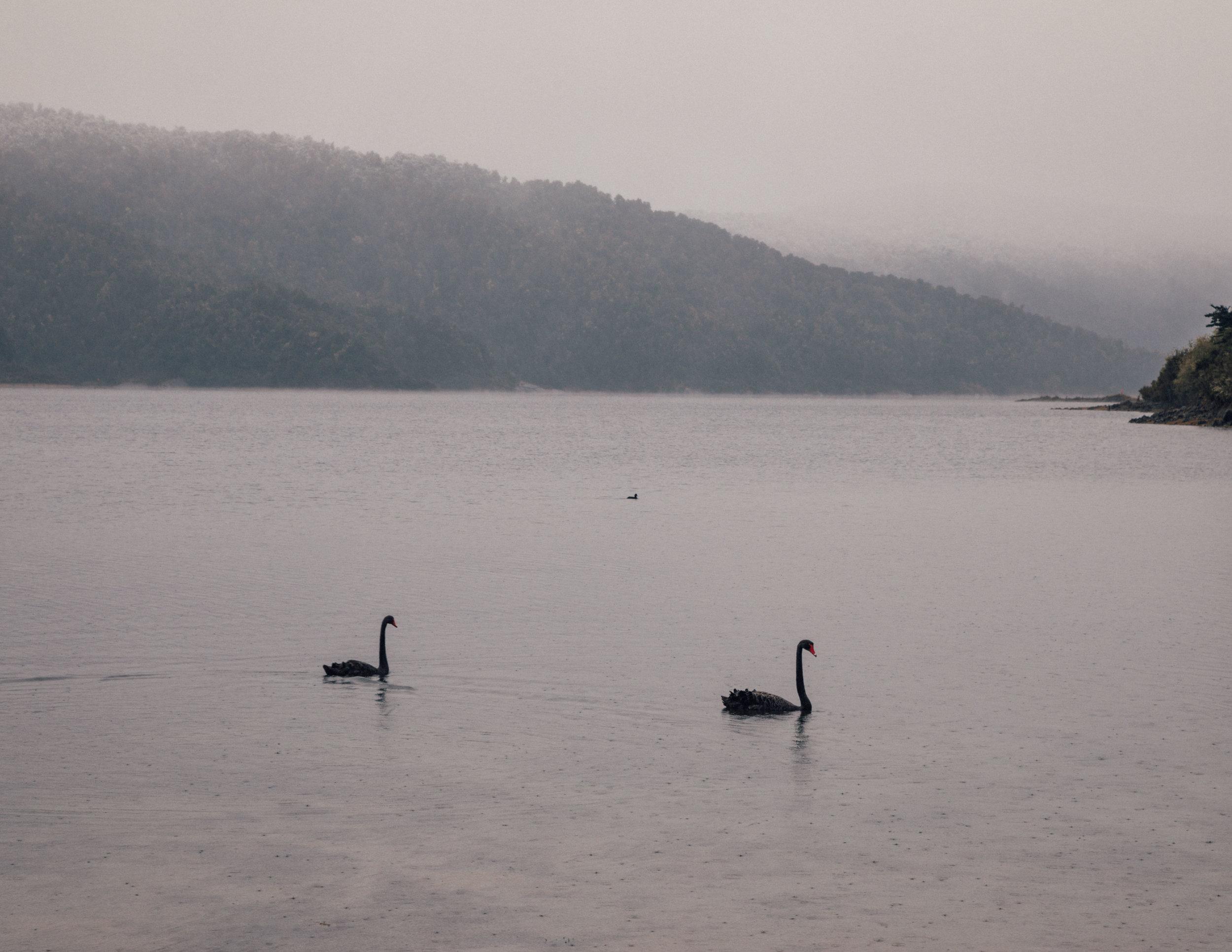 Lake Waikaremoana