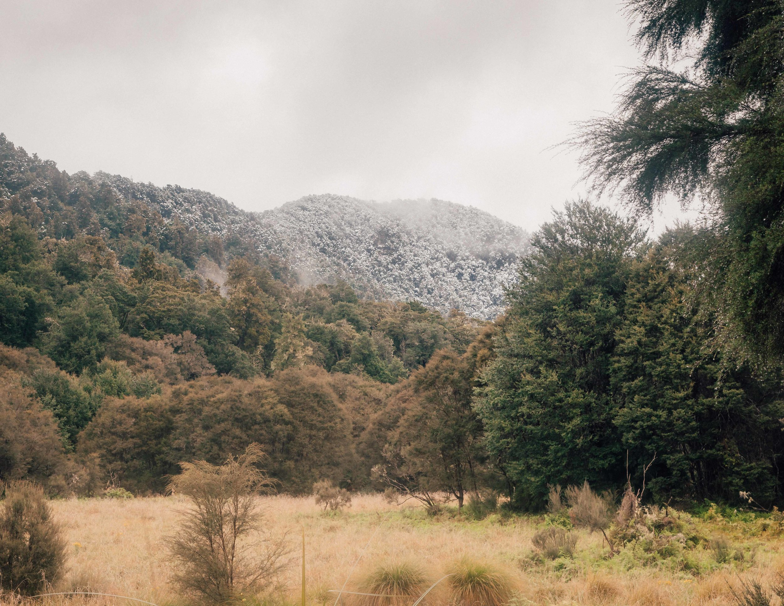 Snow on the Lake Waikaremoana Track