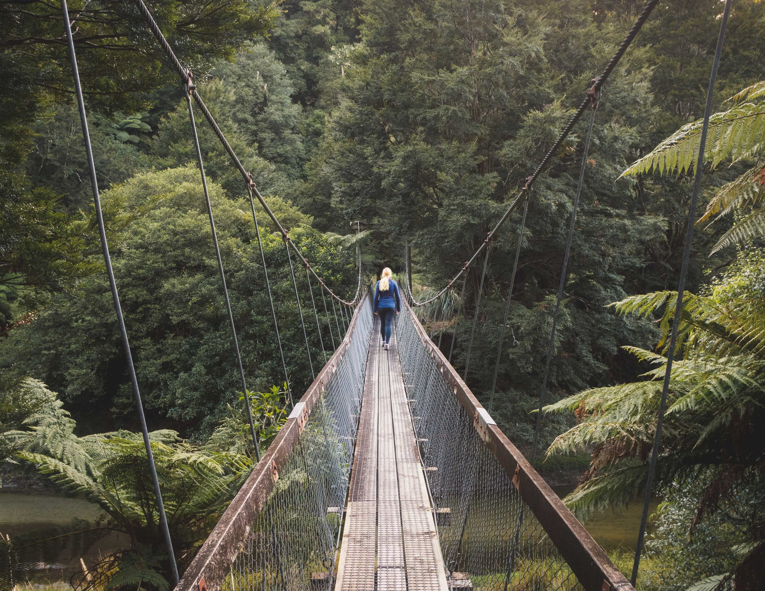 Booking Lake Waikaremoana
