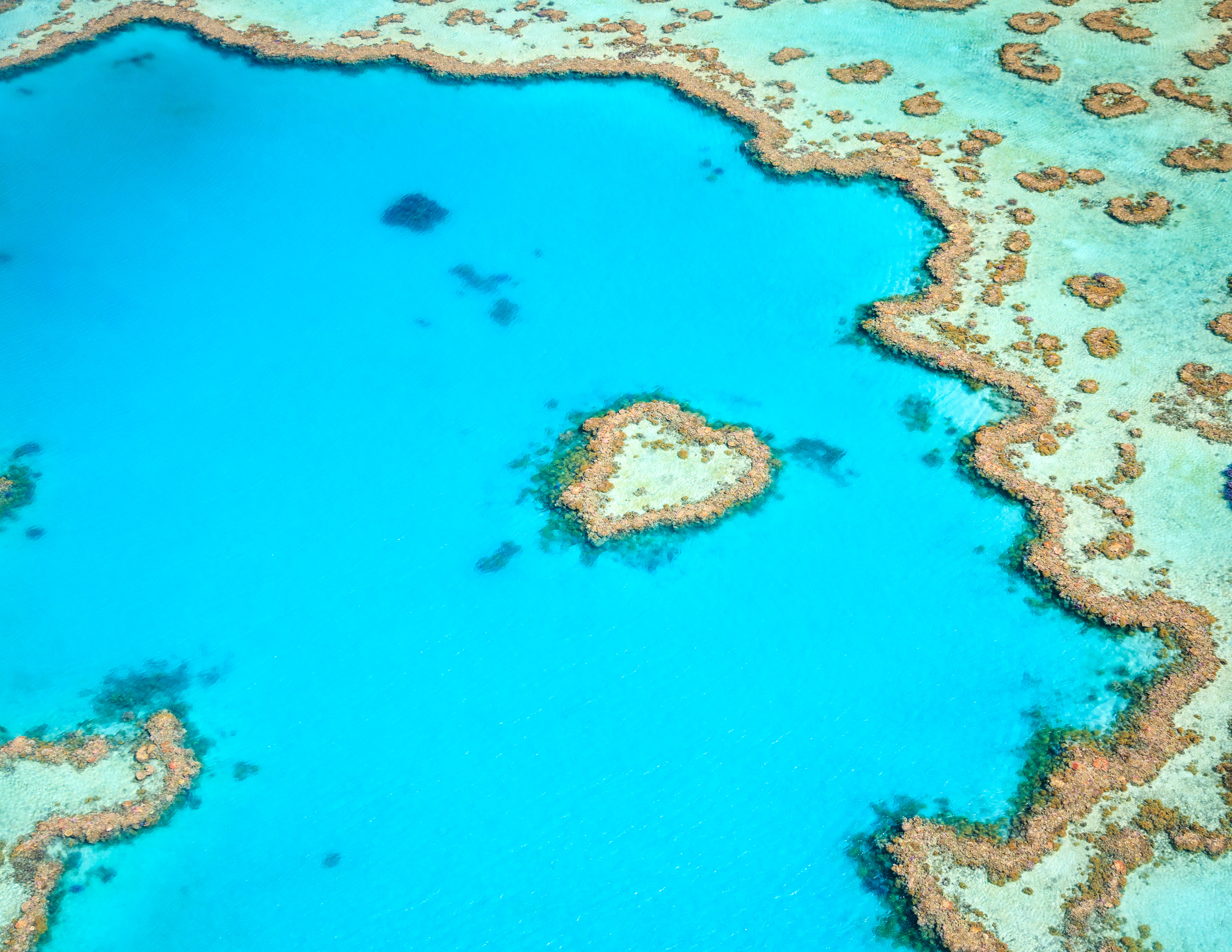 Best time to visit the Great Barrier Reef