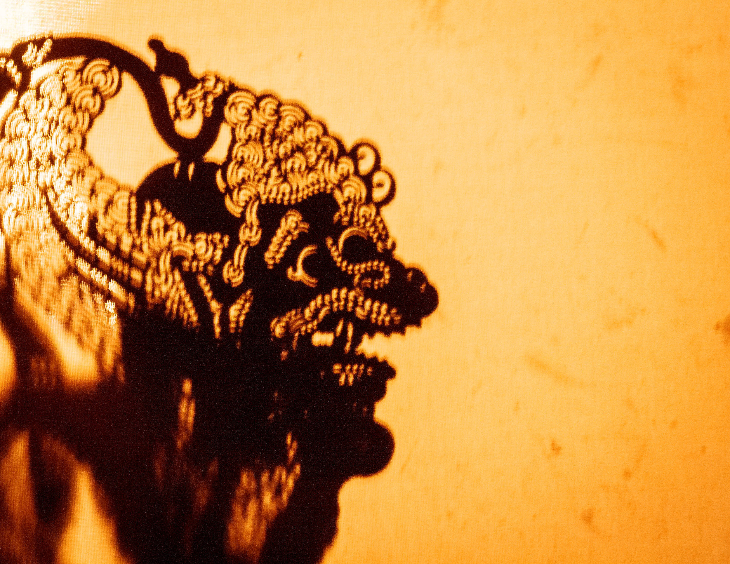 Amazing things to do in Ubud at night: Shadow puppets