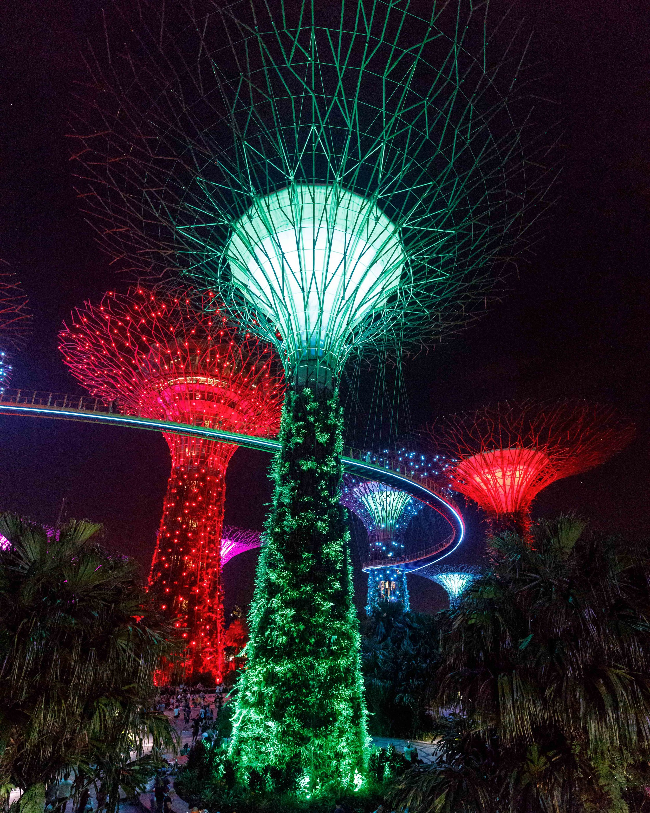 Instagrammable Singapore - Gardens by the bay at night