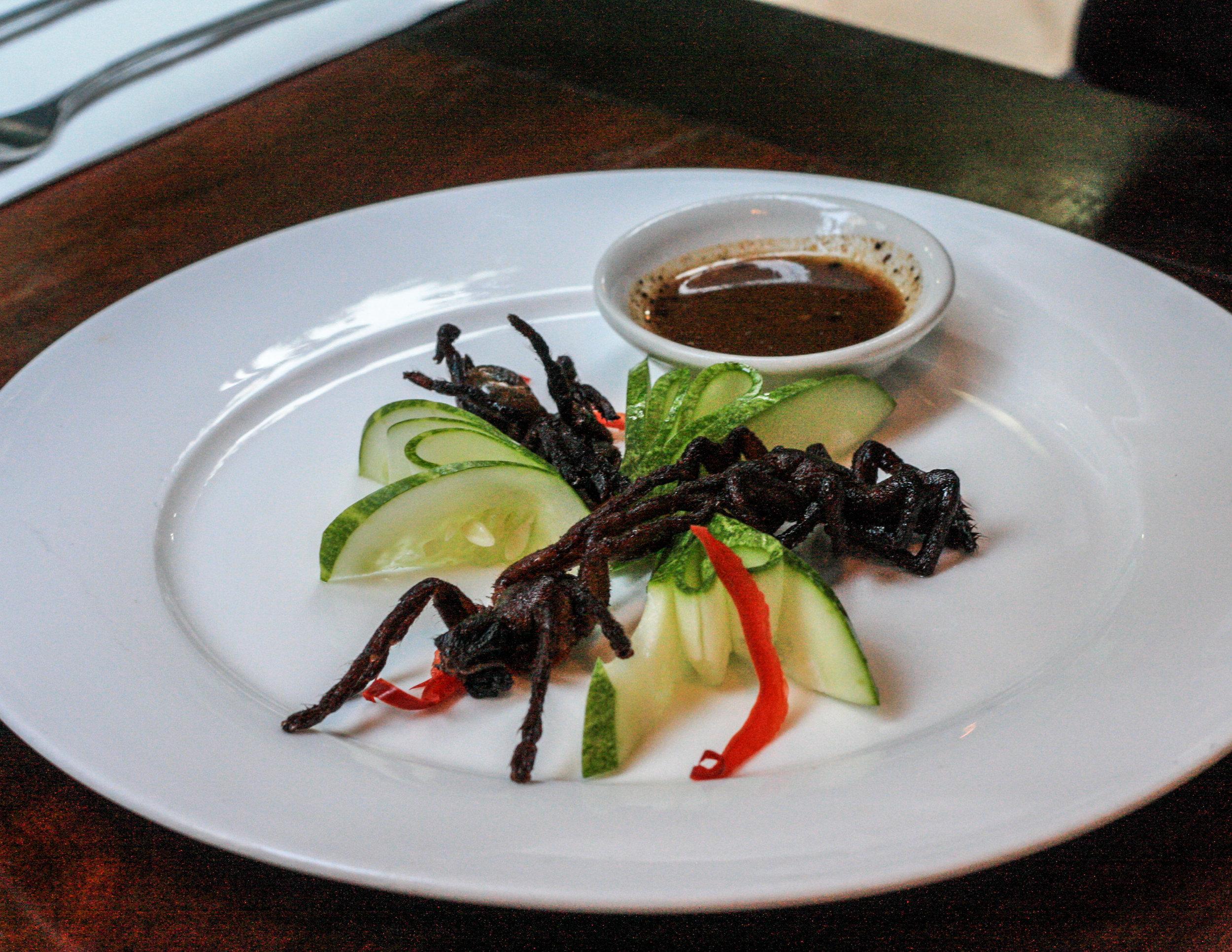 The food for the daring: deep-fried tarantula