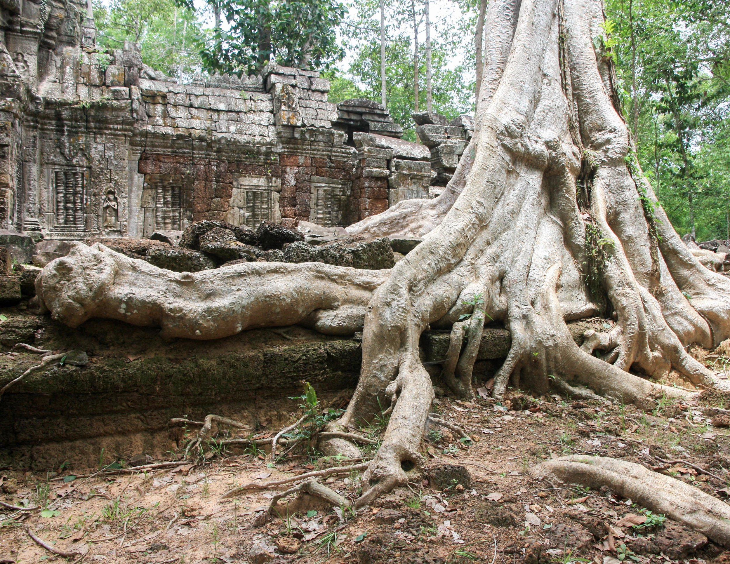 Cambodia Itinerary: Beng Melea