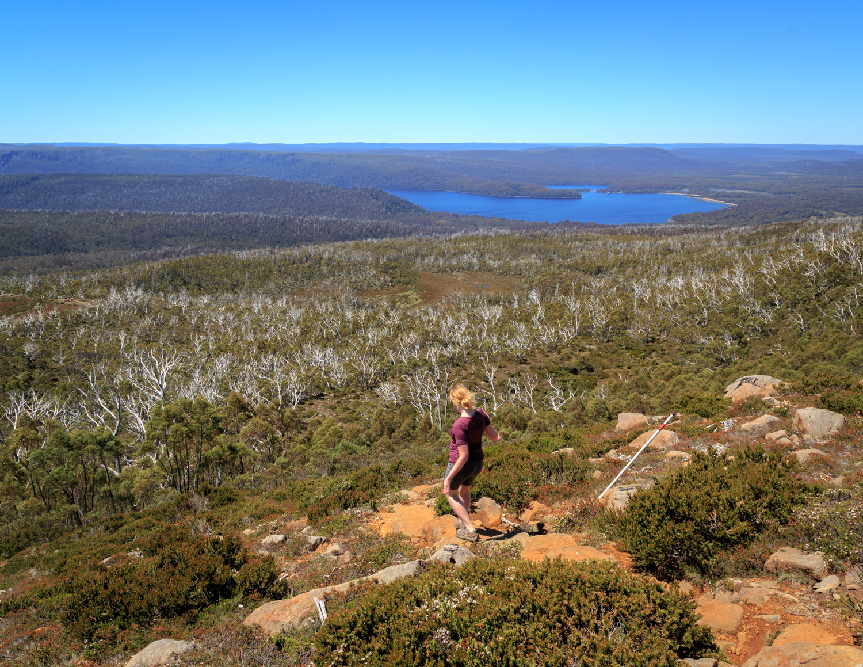 Two Weeks Tasmania Itinerary: Mount Rufus Walk