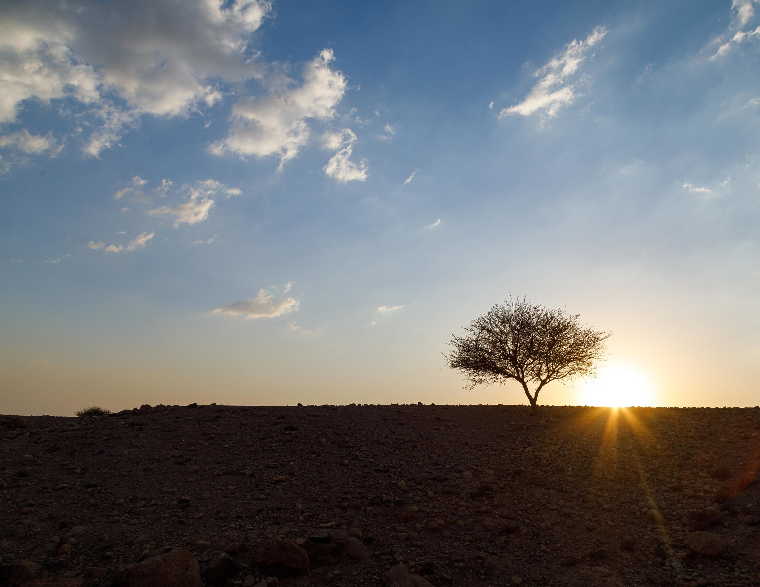 Dana Biosphere Reserve: Sunset hike at Feynan