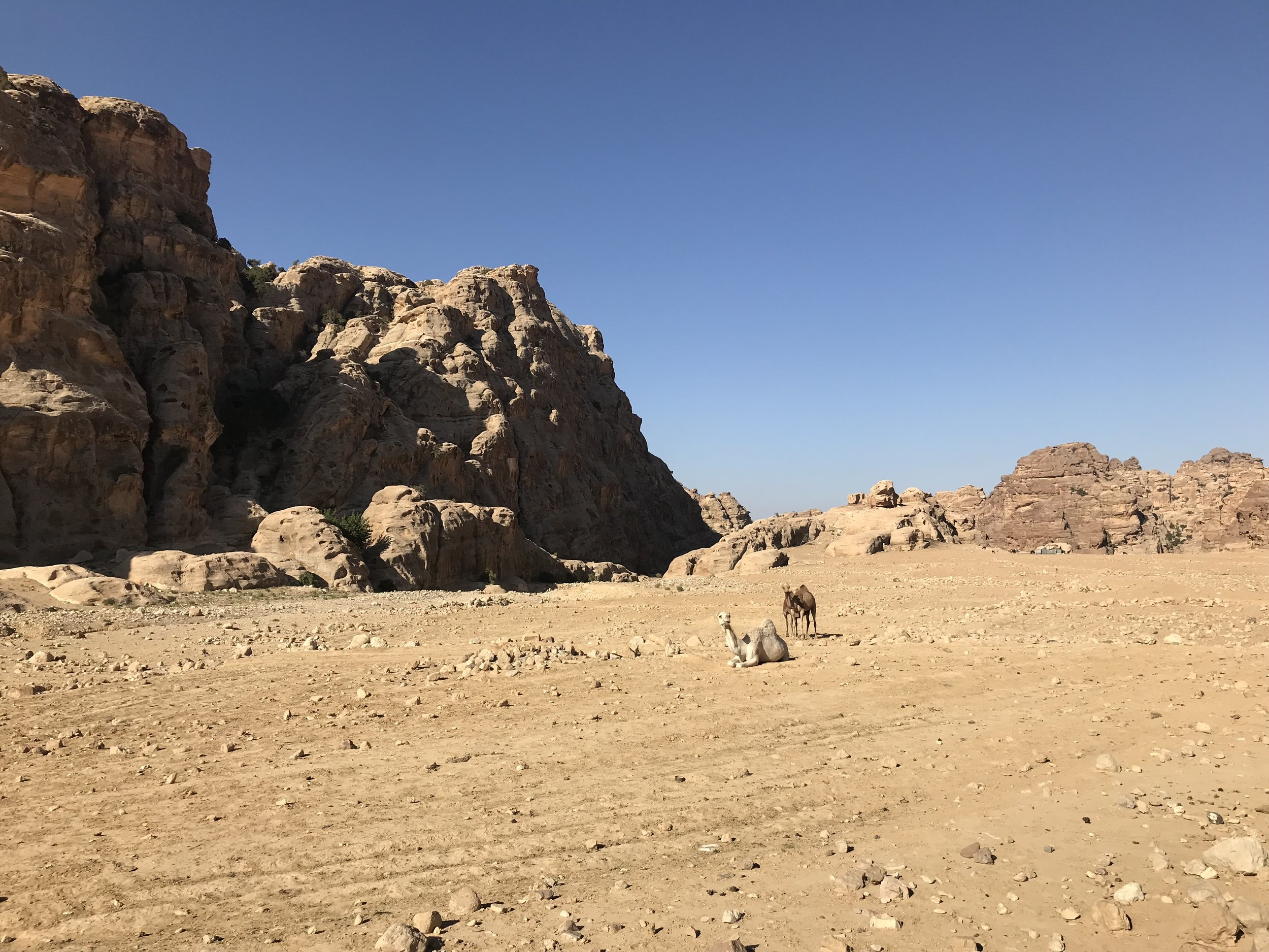 The start of the Little Petra to Monastery Walk