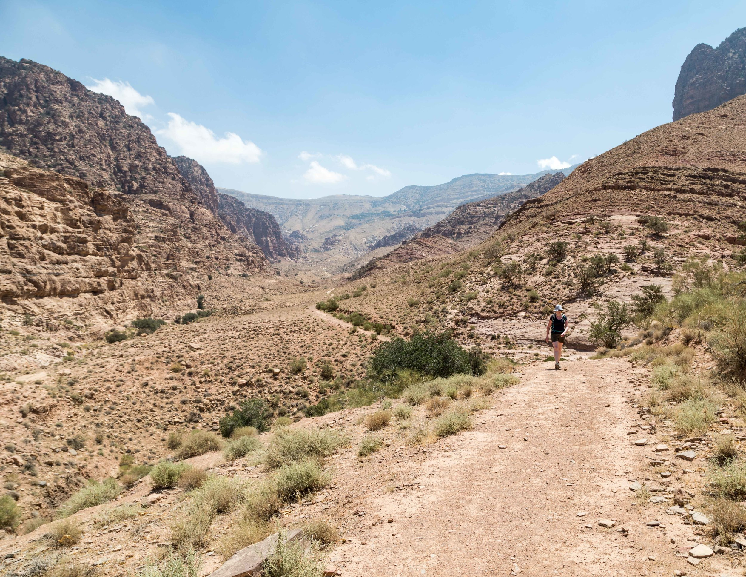 Dana Biosphere Reserve: Wadi Dana Walk