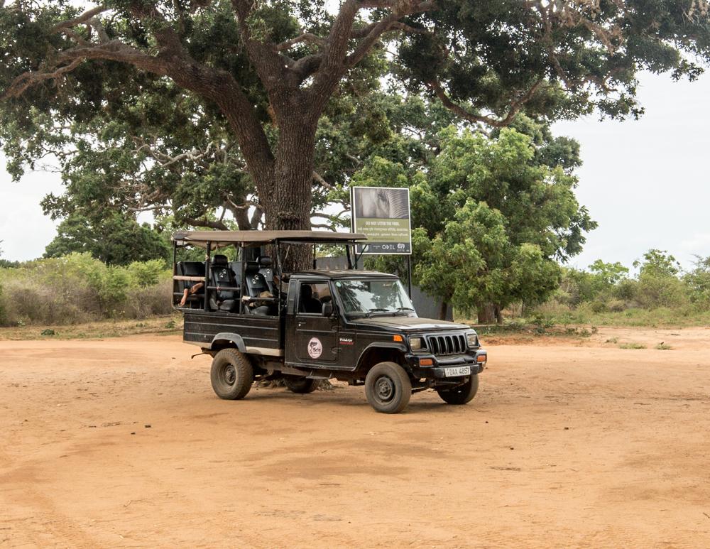 Yala Safari Jeeps: The jeep!