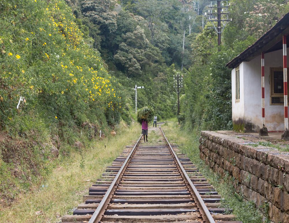 Idalgashinna to Haputale Railway Walk: The old disused train station