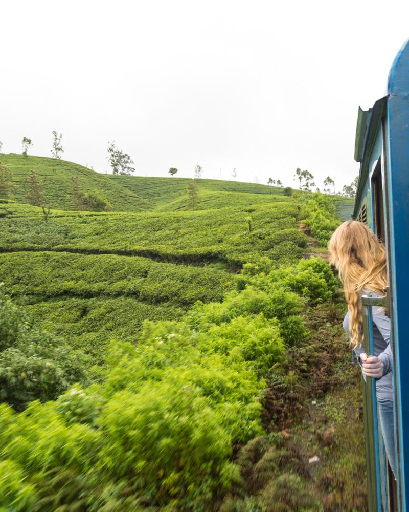 Instagram worthy places in Sri Lanka: Kandy to Nuwara Eliya Train