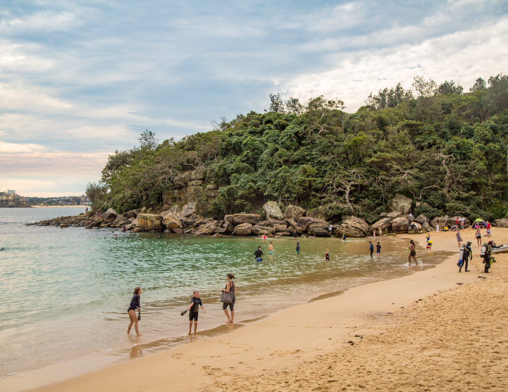 Best things to do in Sydney: Snorkel at Shelley Beach