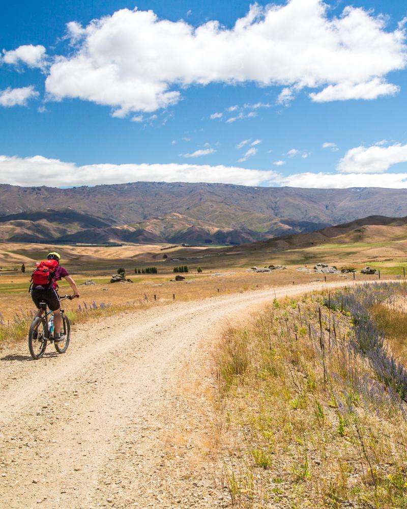 2 week New Zealand South Island Itinerary: Otago Rail Trail