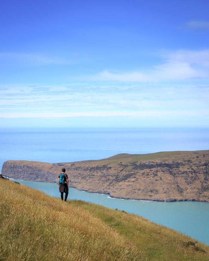 South Island Road Trip: Banks Peninsula