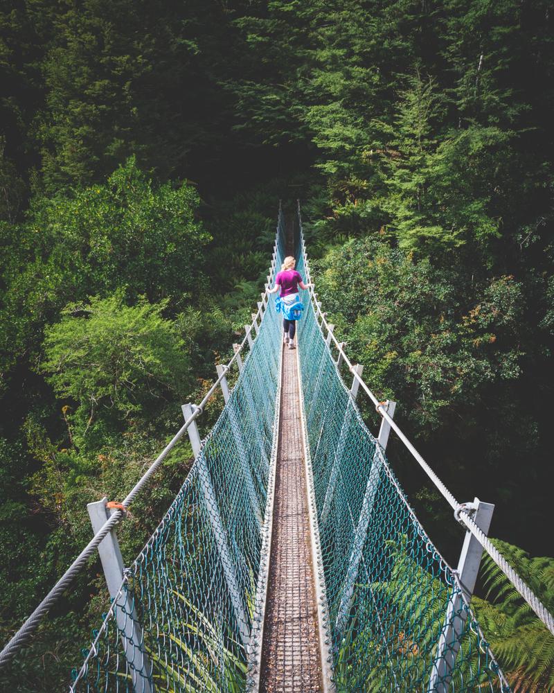 South Island Road Trip: The Hump Ridge