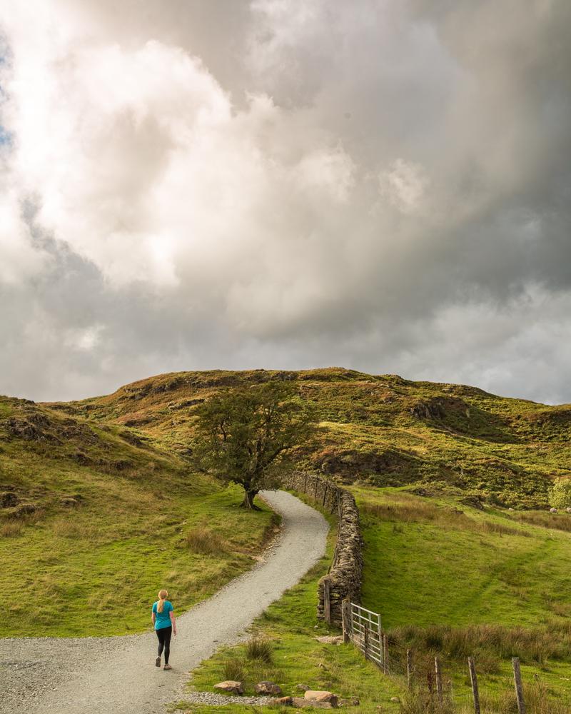Loughrigg Fell: Lakeland countryside